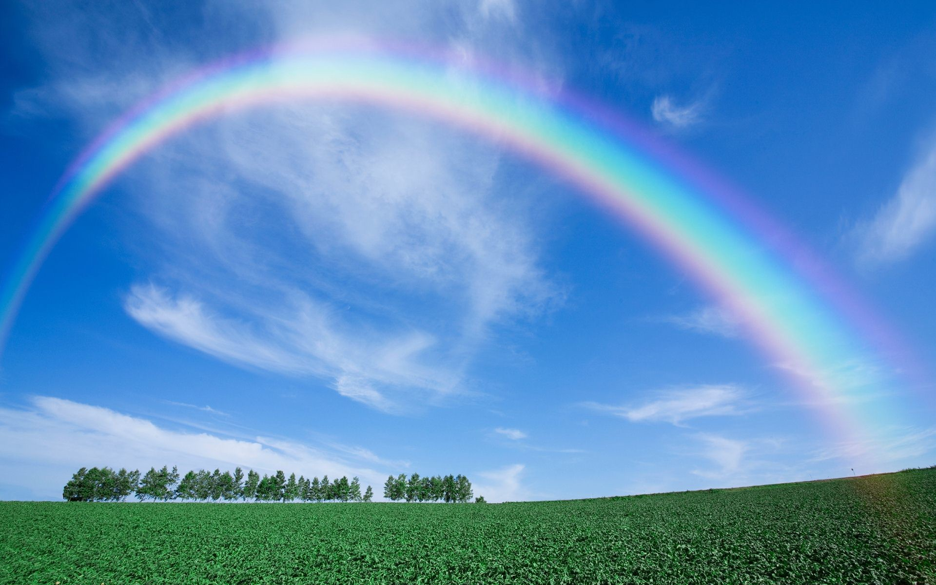 Res: 1920x1200, Rainbow In Real Life Wallpaper
