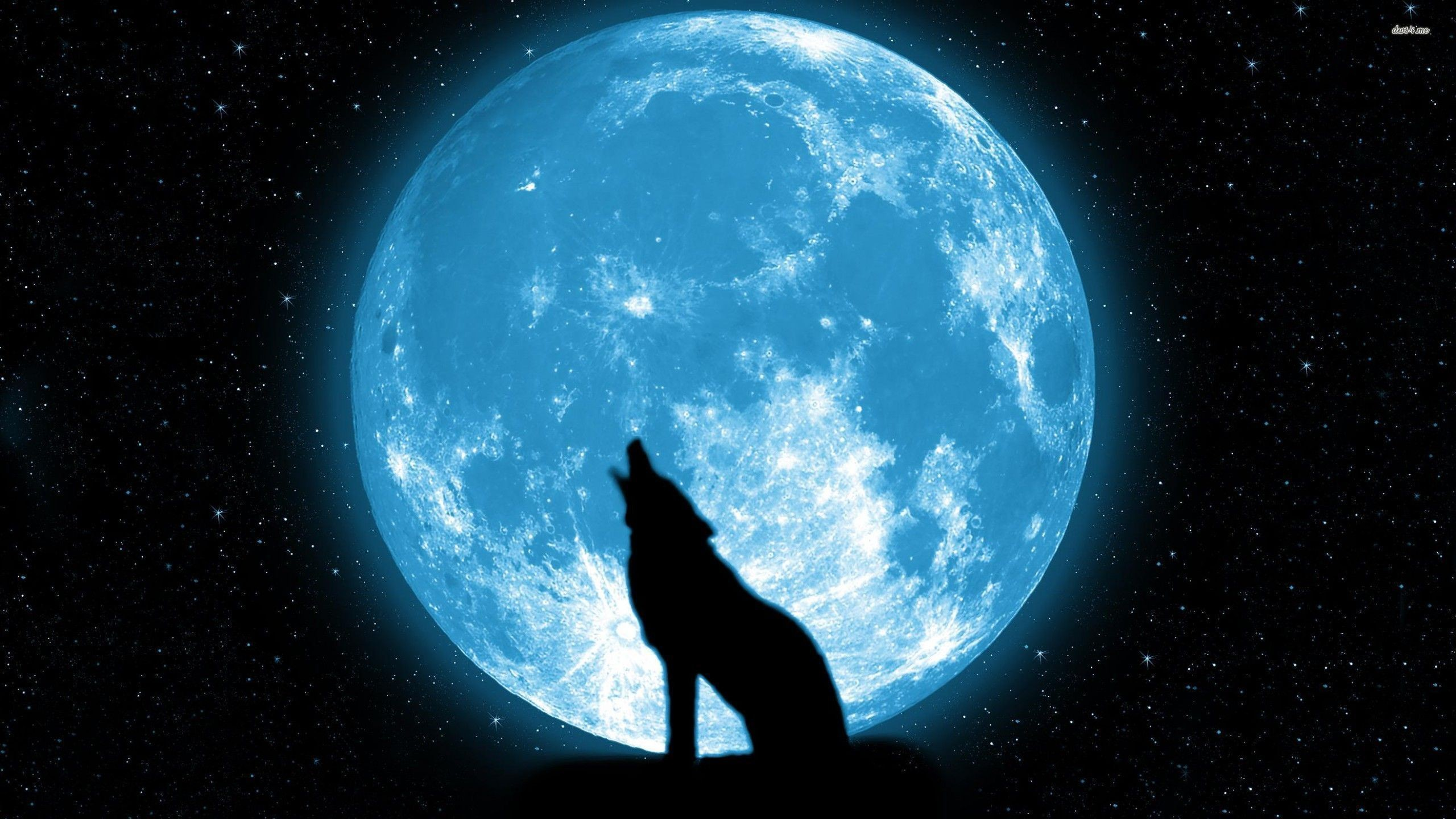 Res: 2560x1440, Wolf-Moon-Wallpapers-Gallery-(67-Plus)-PIC-WPW5011401