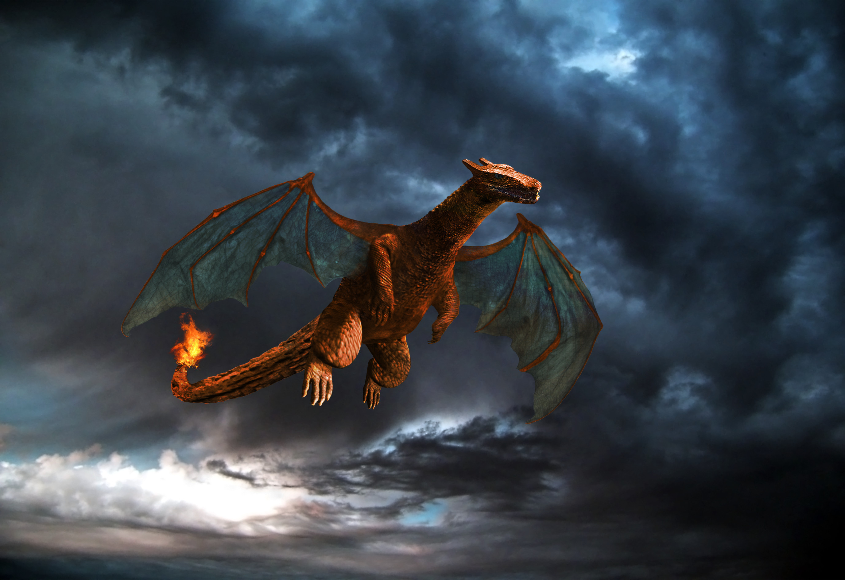 Res: 2753x1890, ... Real life Charizard (Light) by WrathOfSithis