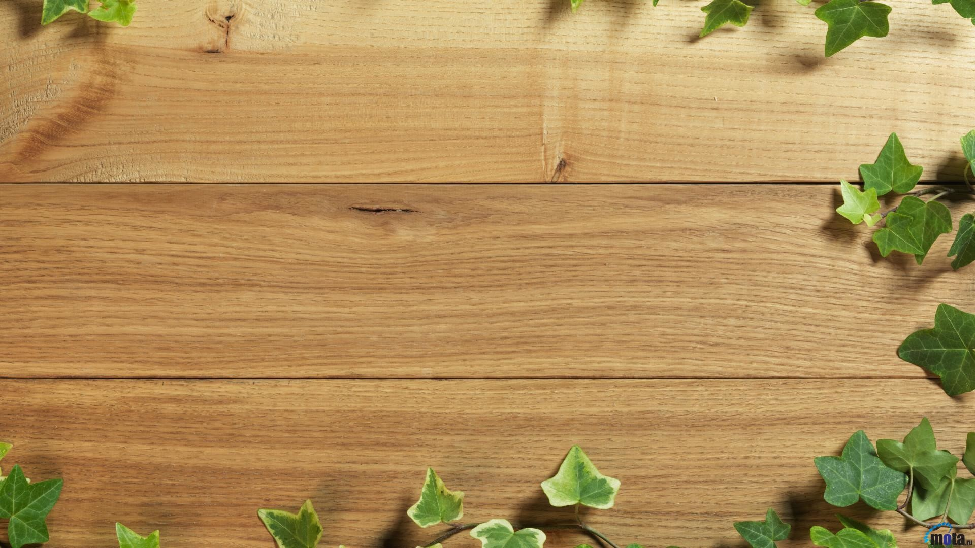 Res: 1920x1080, Download Wallpaper Texture of the wood (1920 x 1080 HDTV 1080p .