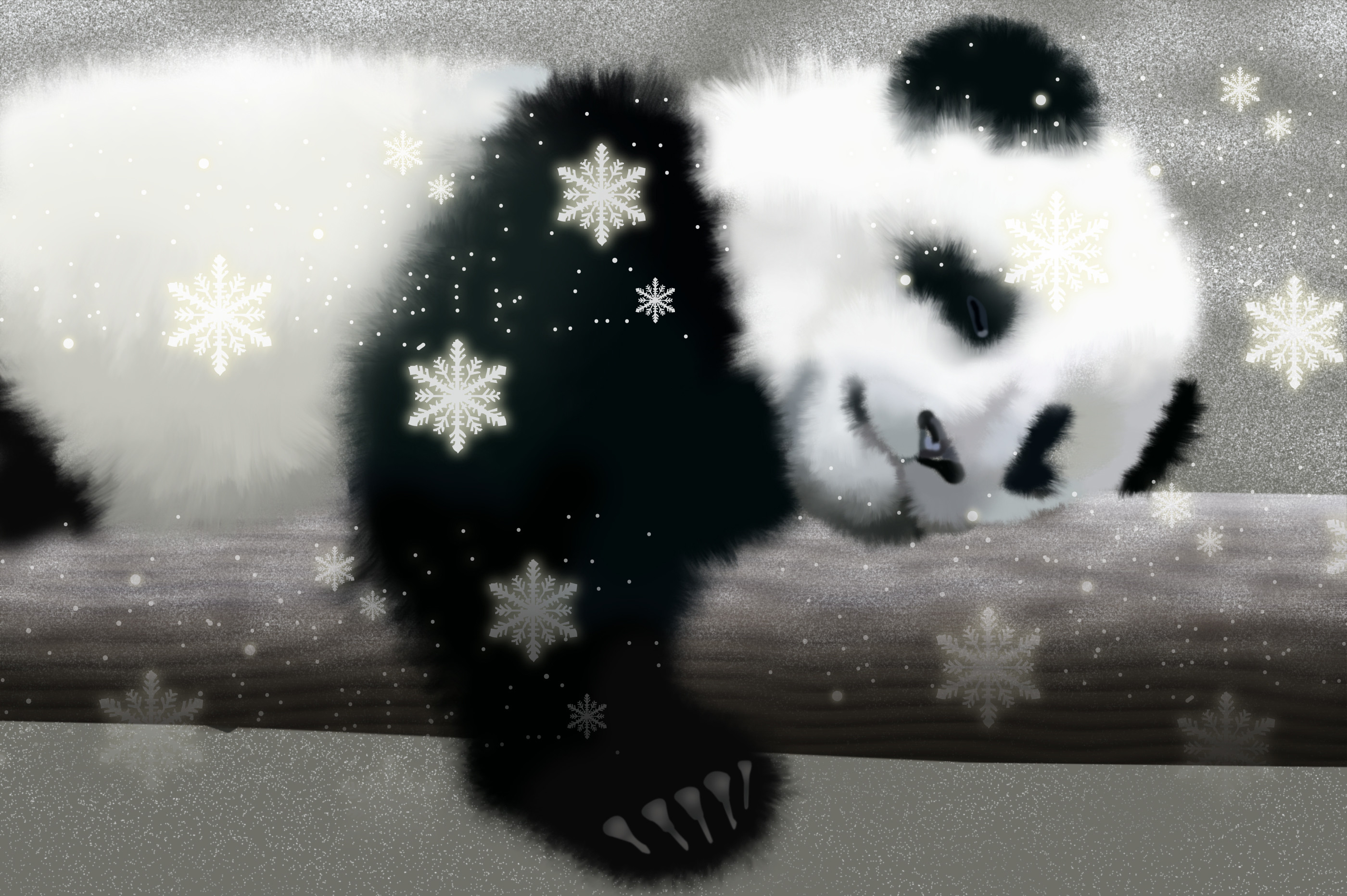 Res: 2800x1863, URL httpbackground picturesfeedionetcute panda wallpapers