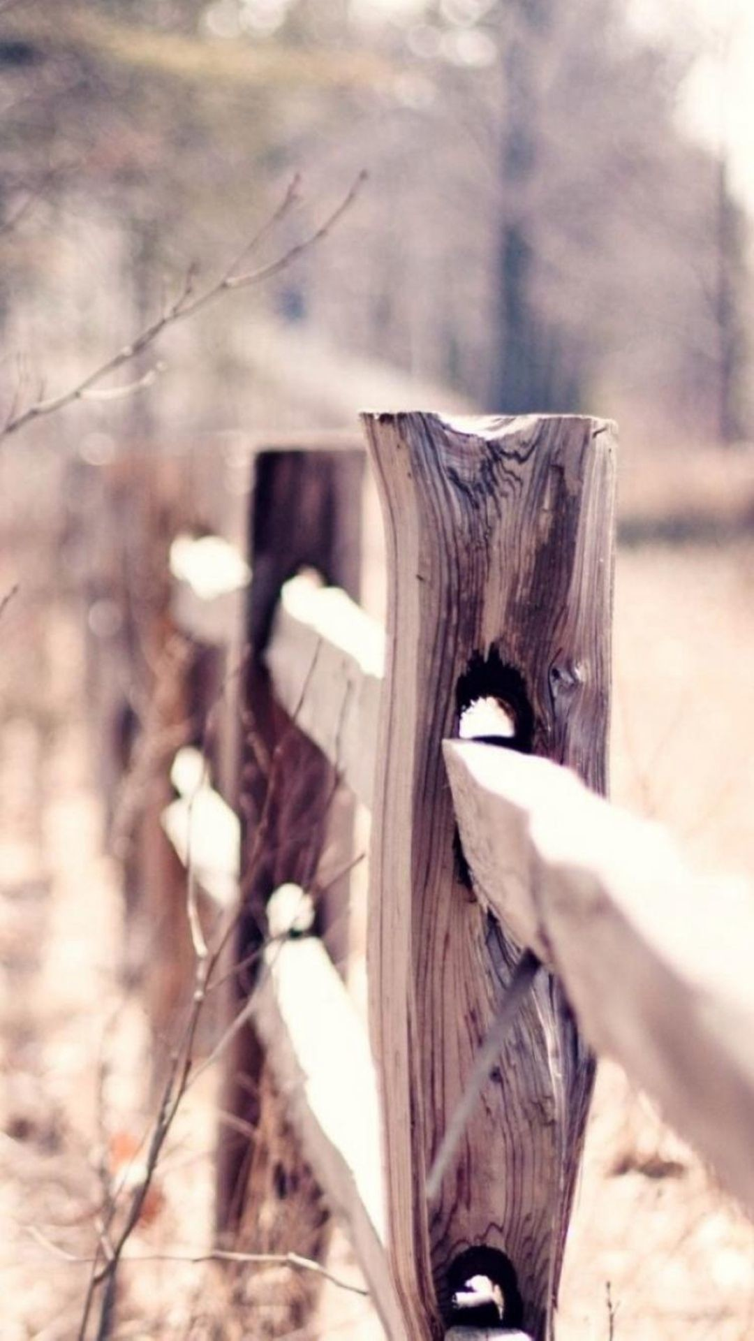Res: 1080x1920, Country Suburban Forest Fence Bokeh iPhone 6 wallpaper
