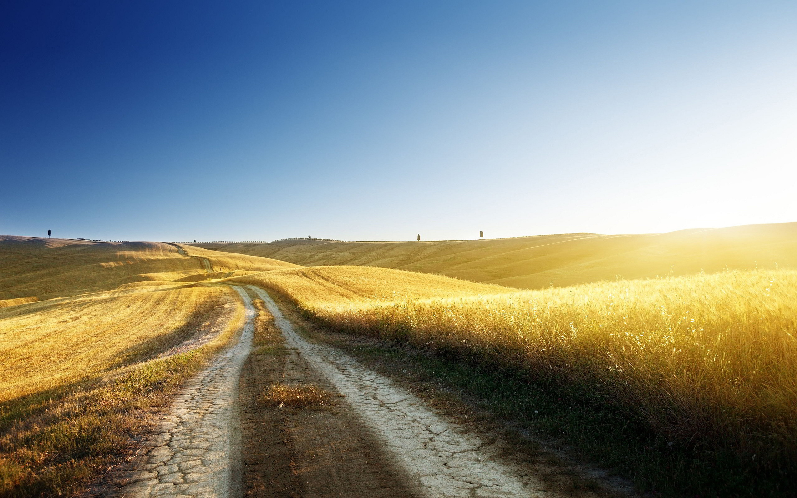 Res: 2560x1600, Golden Country Road Wallpaper iPhone