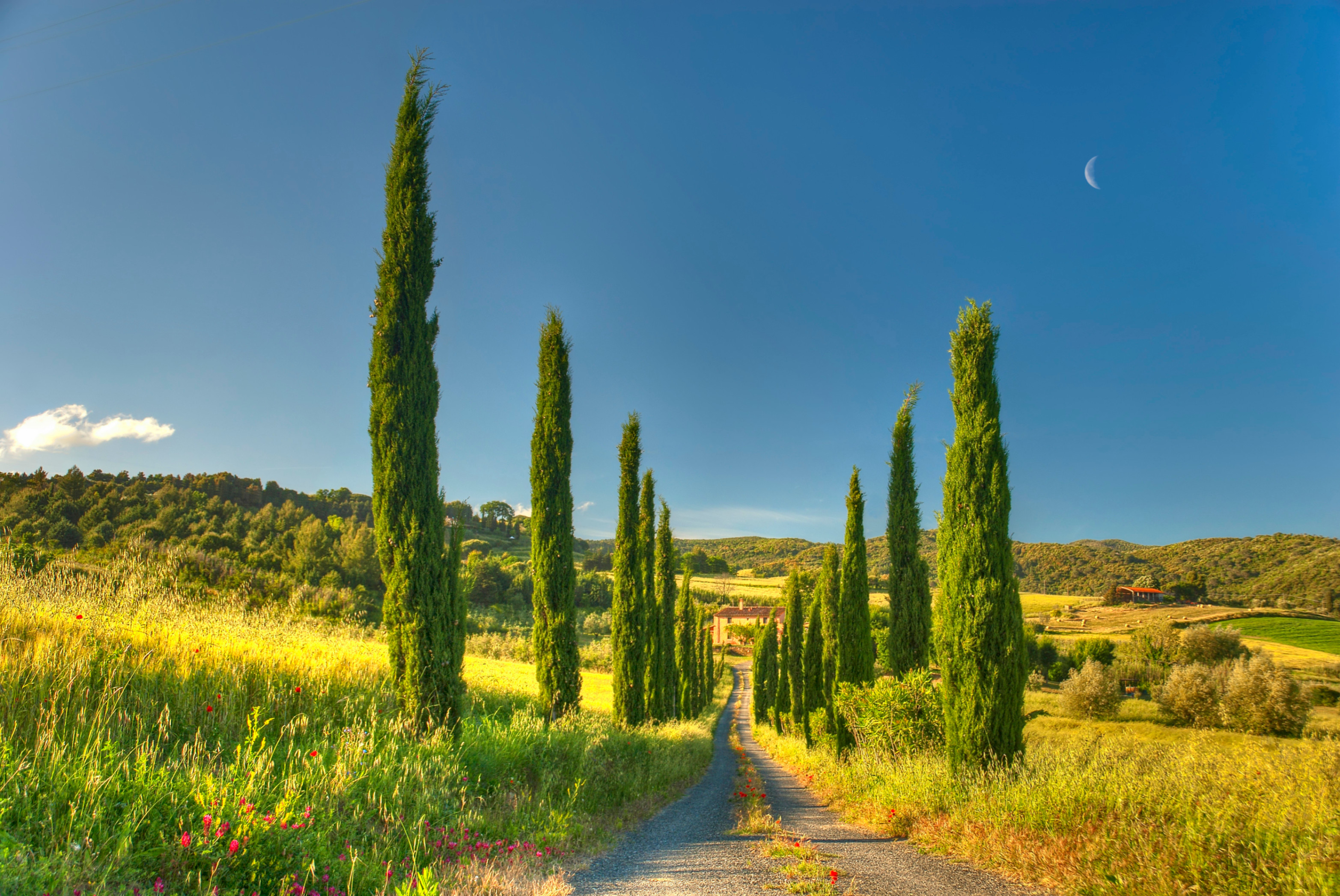 Res: 3130x2094, Landscapes - House Tuscany Cottage Country Villa Road Nature Wallpapers  Photos for HD 16:9