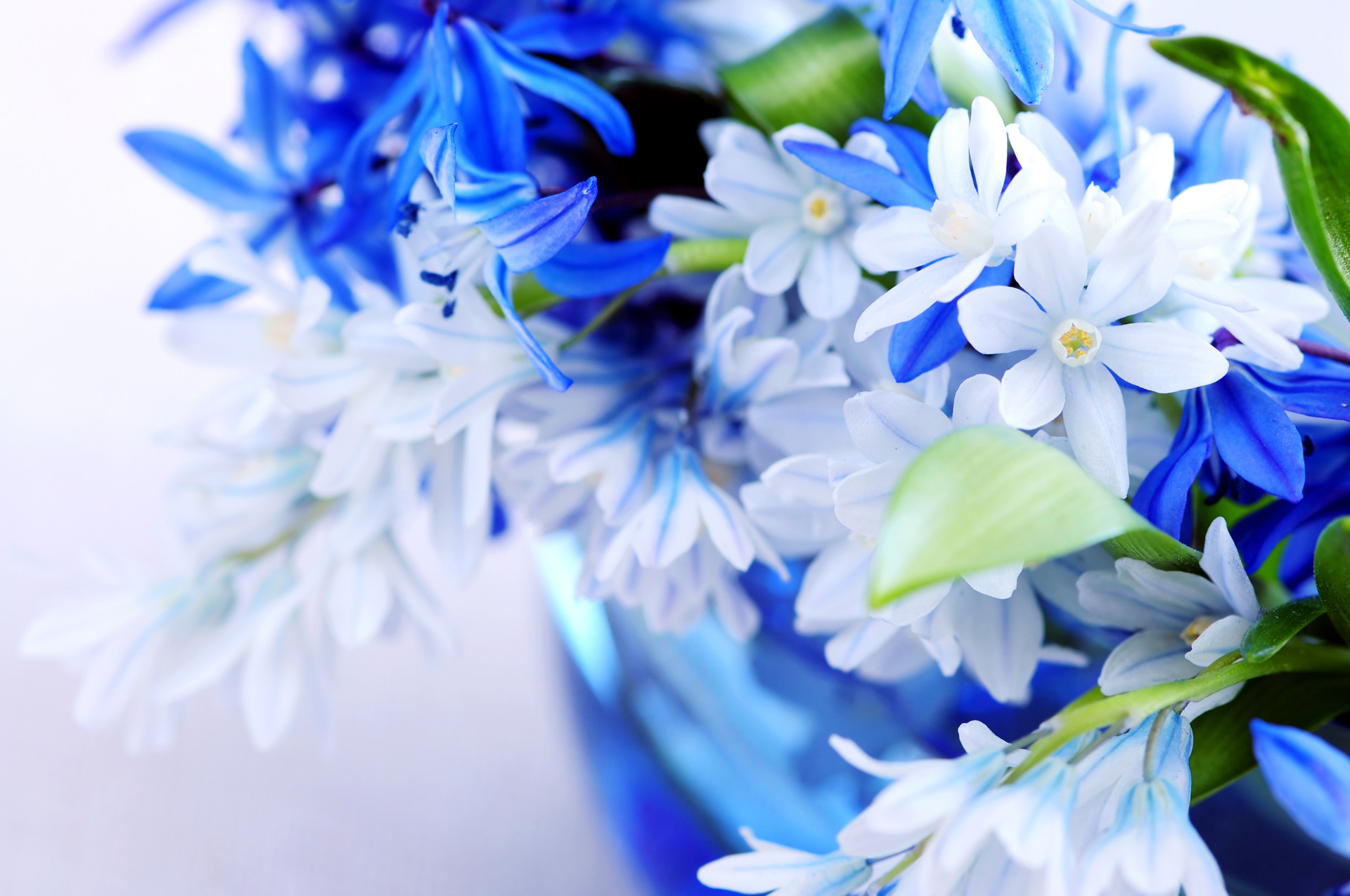 Res: 1920x1275, Spring 66, Free Wallpapers, Free Desktop Wallpapers, HD Wallpapers