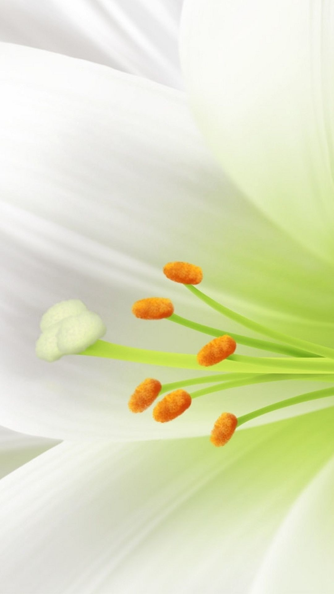 Res: 1080x1920, Pure White Lily Flower Macro #iPhone #6 #plus #wallpaper