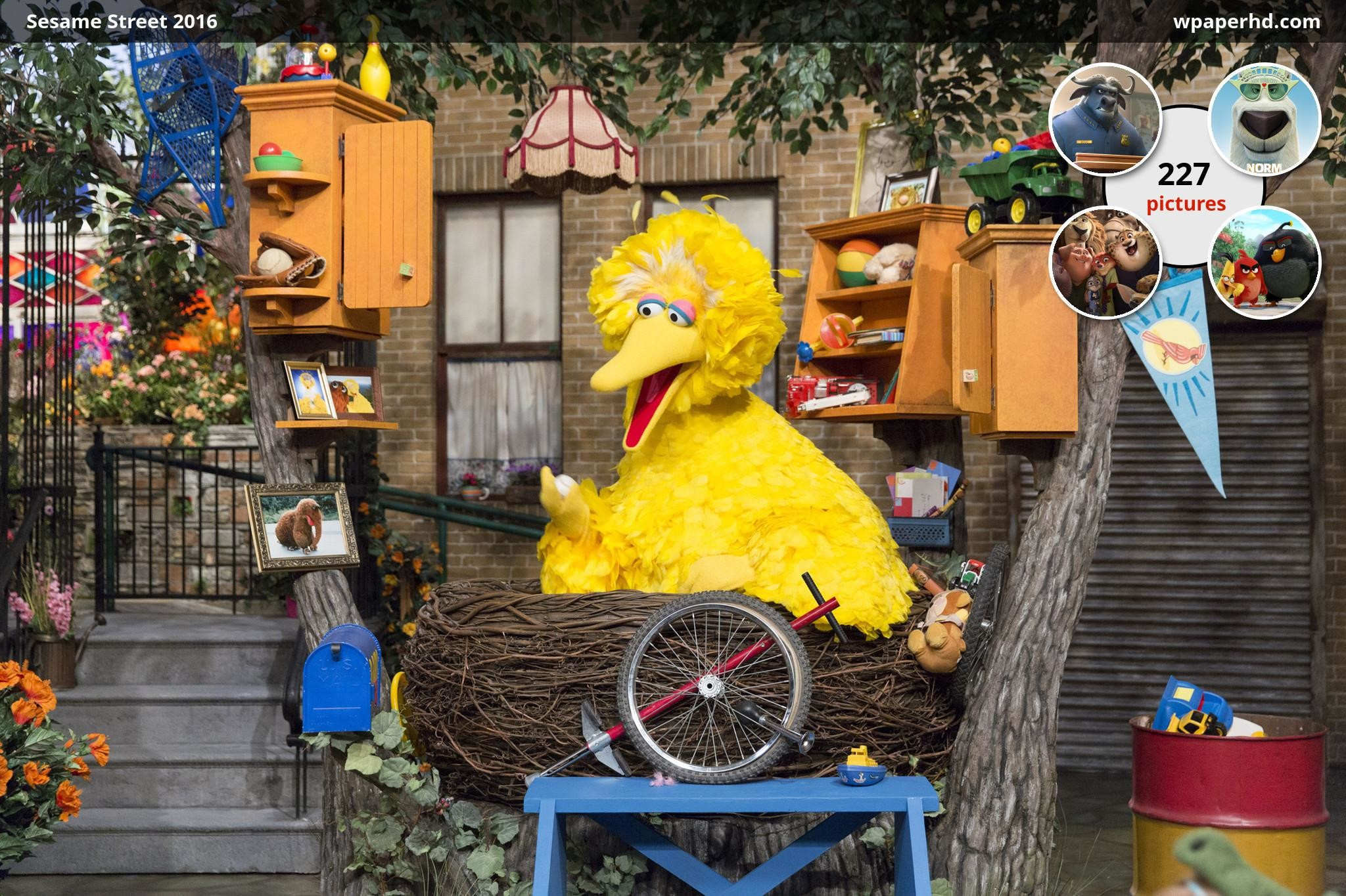 Res: 2048x1365, You are on page with Sesame Street 2016 wallpaper, where you can download  this picture in Original size and ...