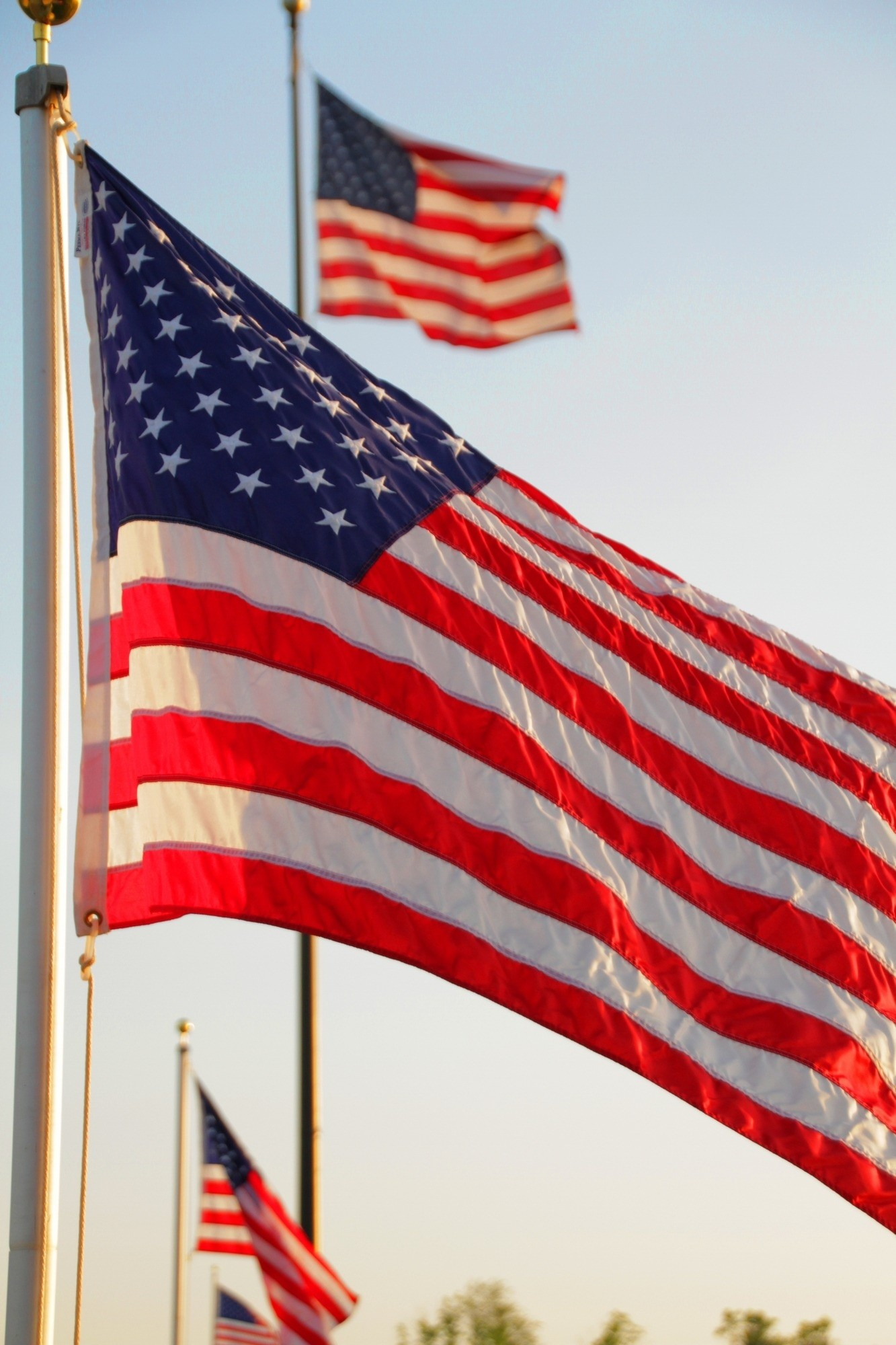 Res: 1333x2000, american flags and pole preview
