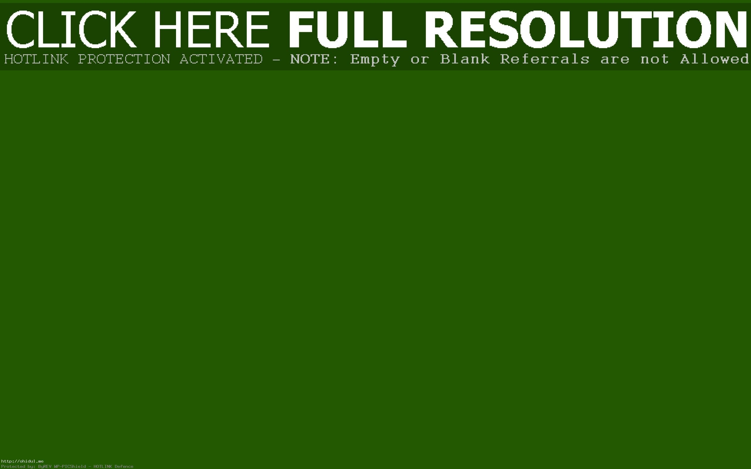 Res: 2560x1600, ... Wallpapers Group 67 Remarkable Bright Green Solid Color Background With  ...