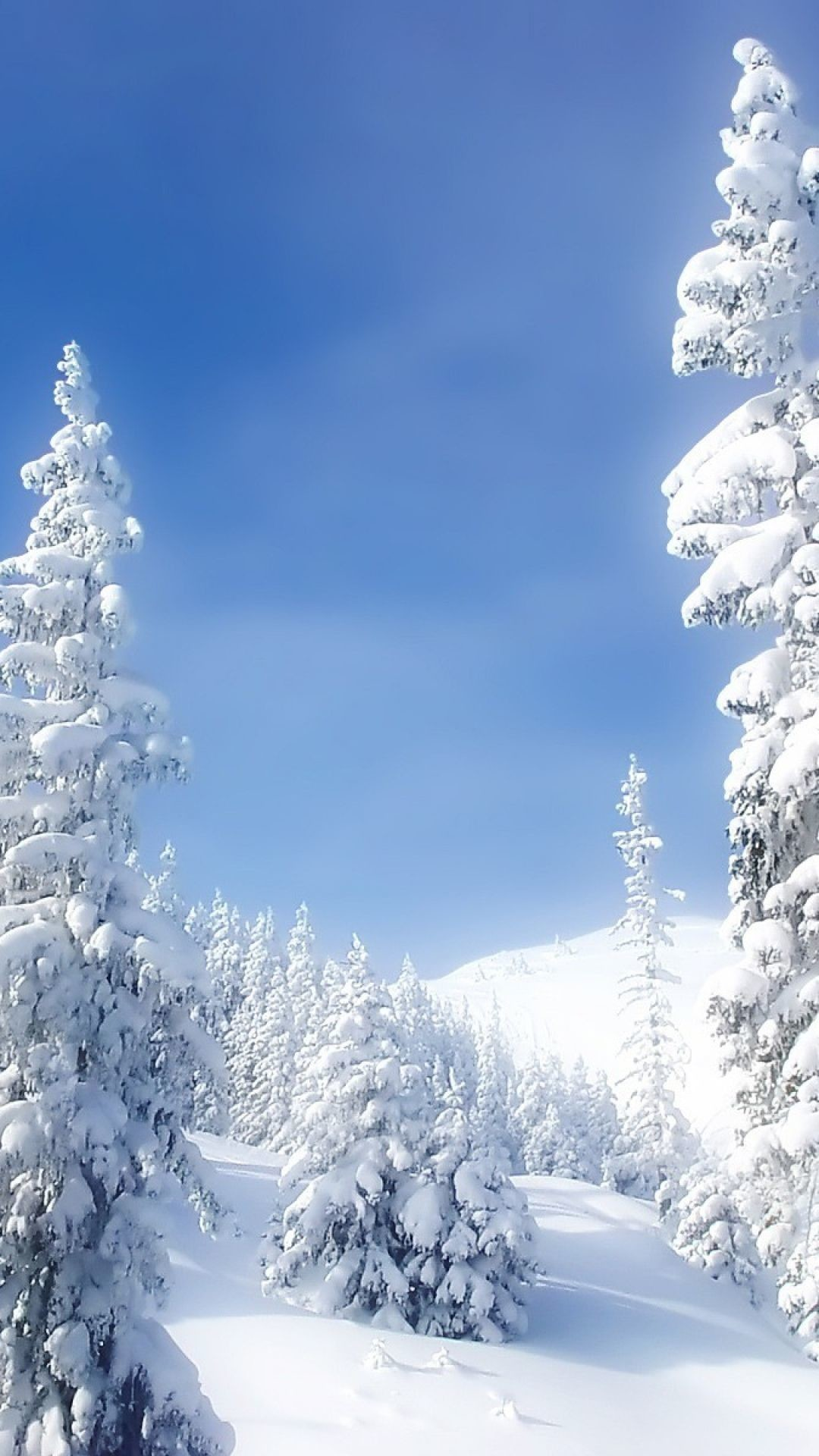 Res: 1080x1920, Winter landscapes live wallpaper for Android. Winter landscapes   Epic Car  Wallpapers   Pinterest   Winter landscape and Landscaping