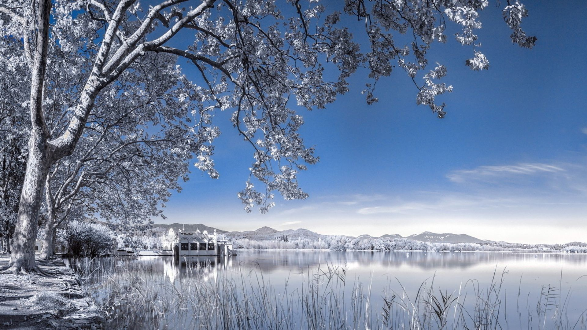 Res: 1920x1080, Winter Backgrounds for Desktop | Wallpapers, Backgrounds, Images .