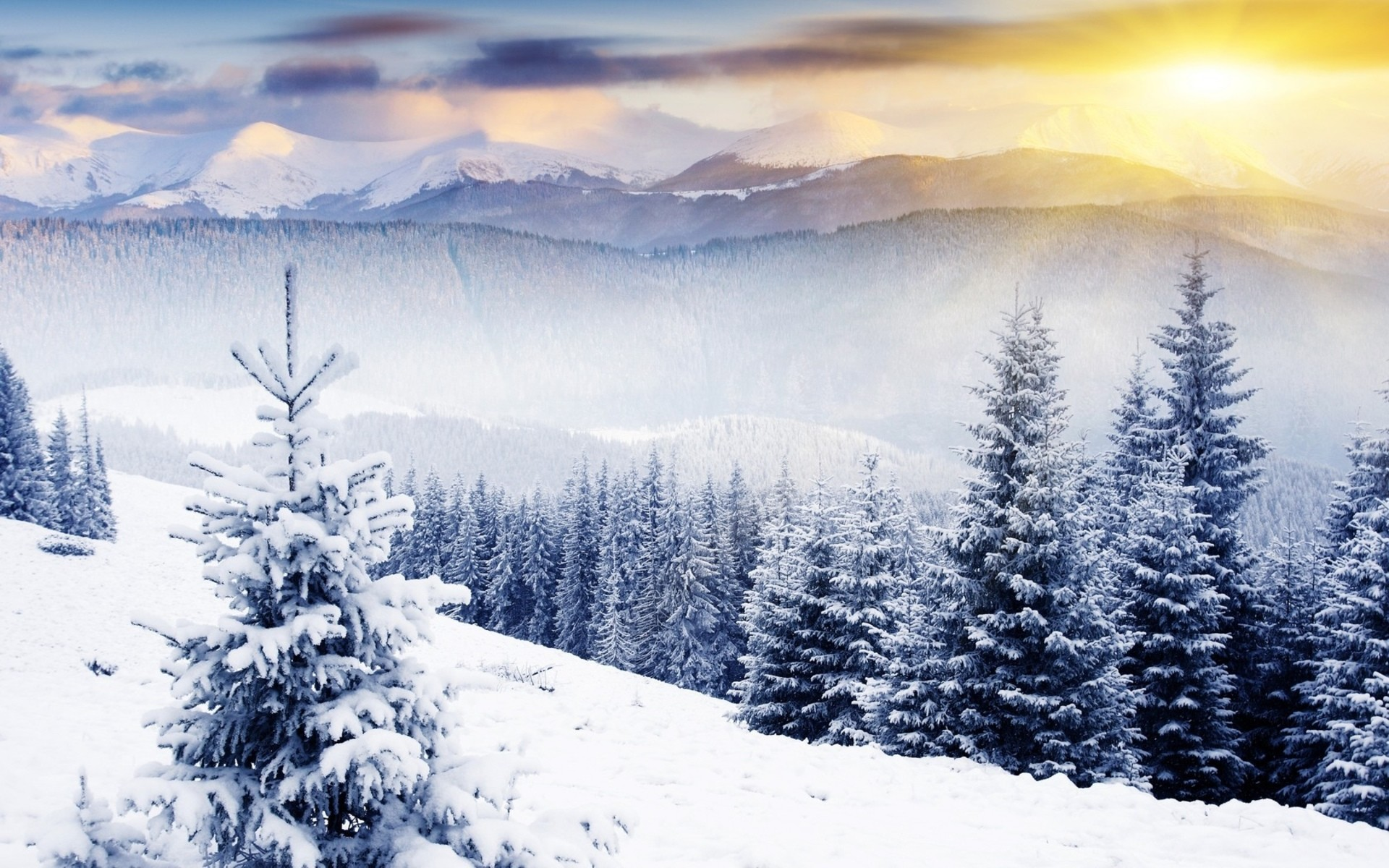 Res: 1920x1200, Winter-Wallpapers-Full-HD-001