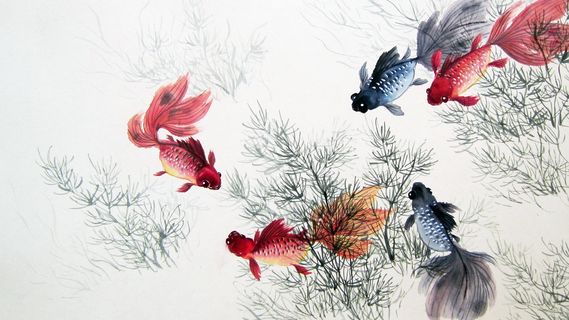 Res: 1920x1080,  Cute Chinese Fishes & Plants