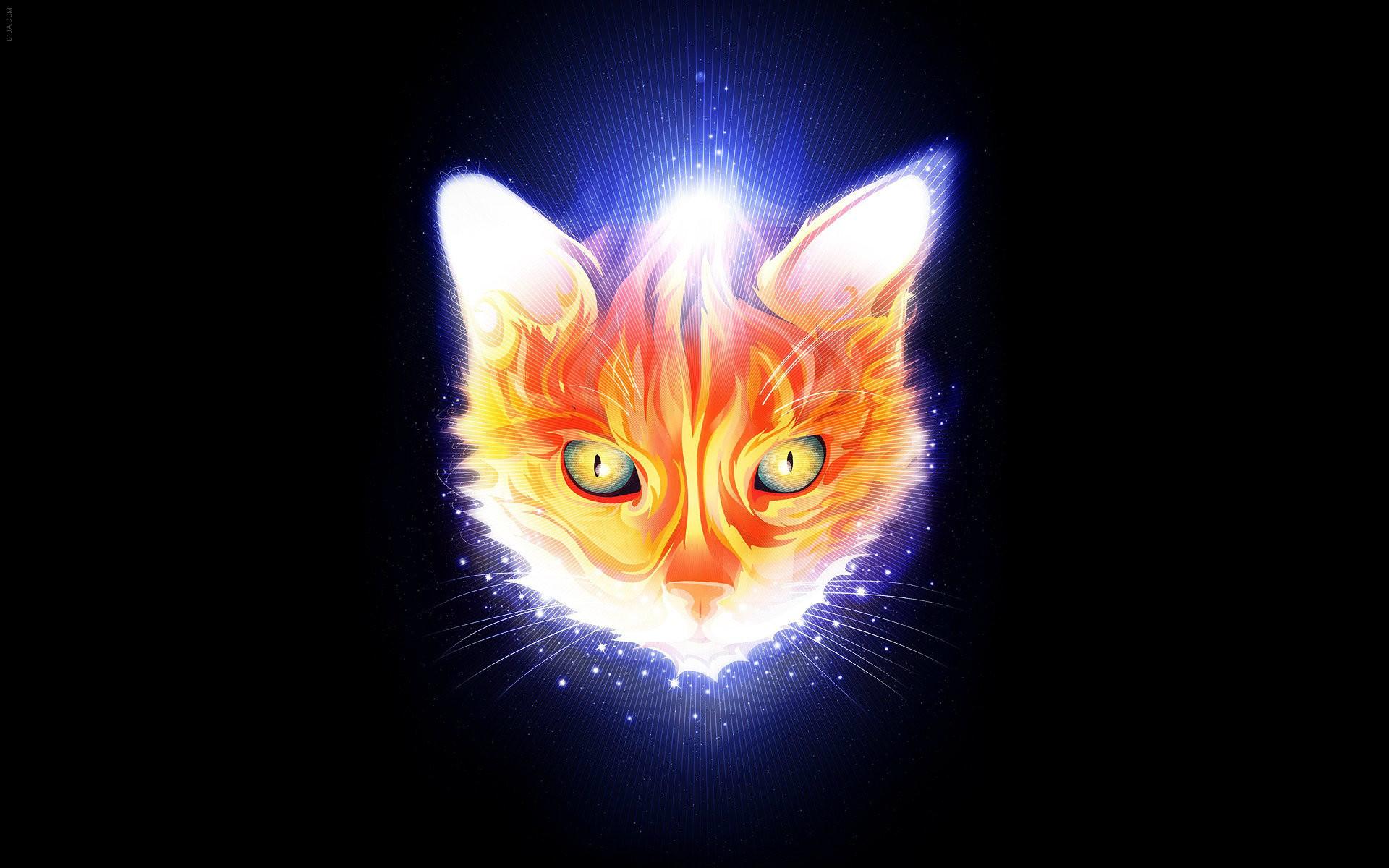 Res: 1920x1200, 3D Cat Cartoon Wallpaper For Desktop