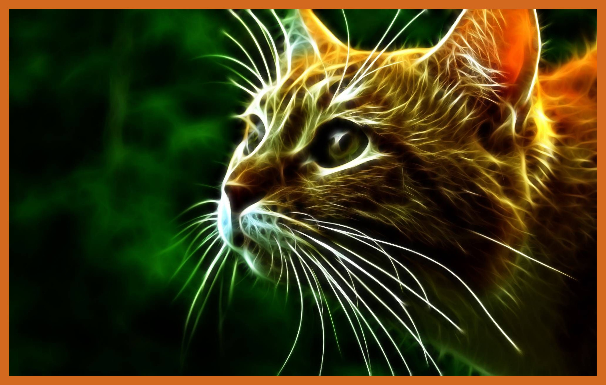 Res: 2062x1311, Cute Cat Wallpaper Cute Cat Wallpaper 3d Stunning Fire Cat Wallpaper Comes  With Magical Picture For