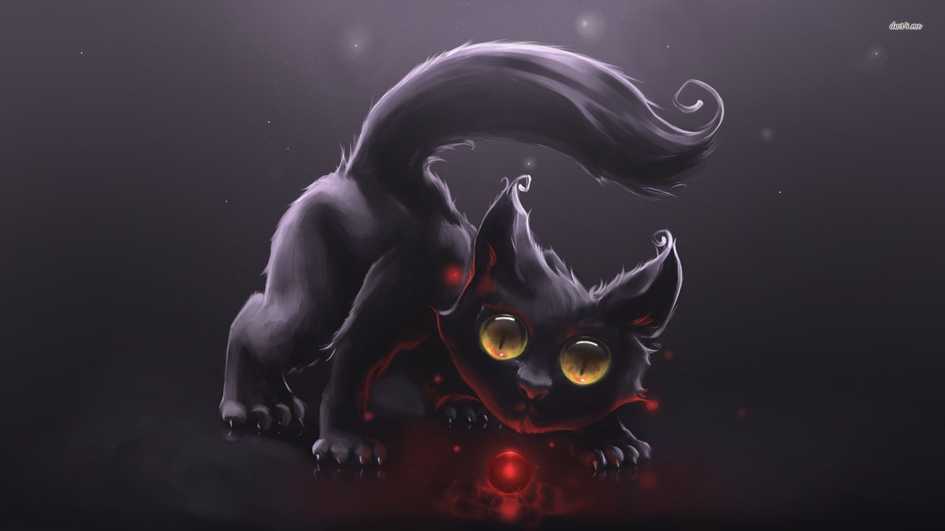 Res: 1920x1080, ... Cute black cat playing with a red orb wallpaper  ...