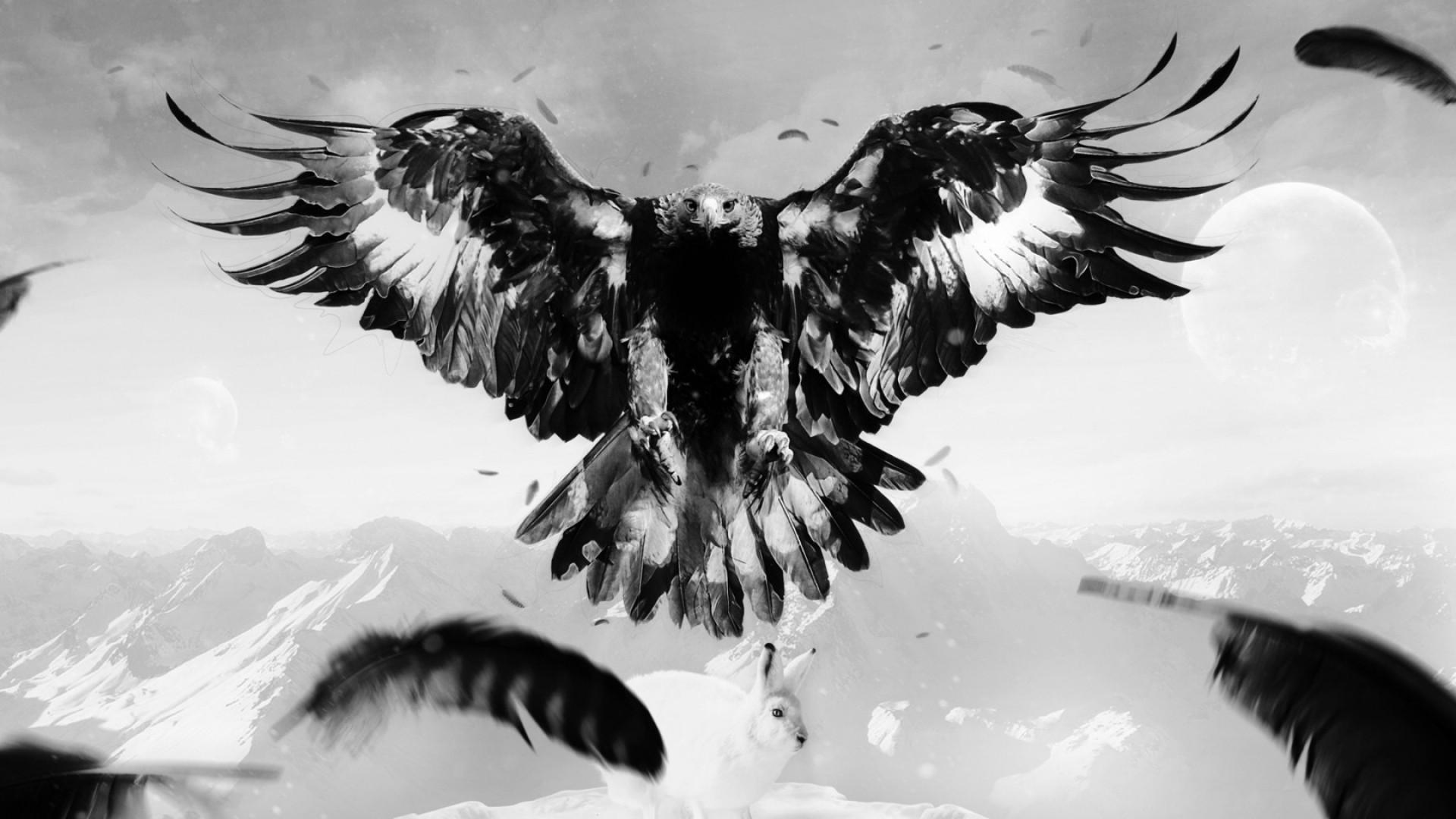 Res: 1920x1080, eagle, hare, art