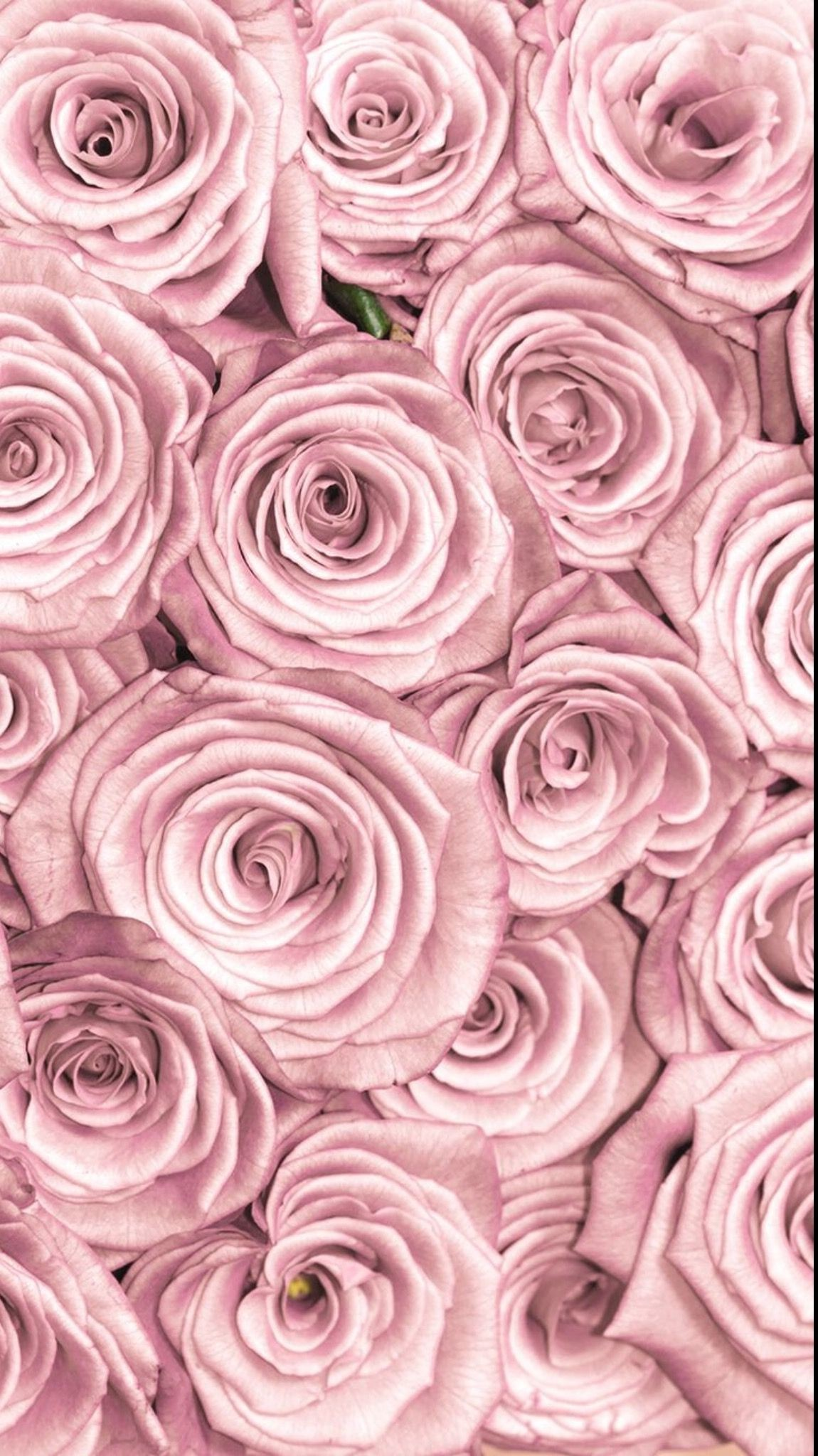 Res: 1150x2048, Flowers lockscreen rose gold