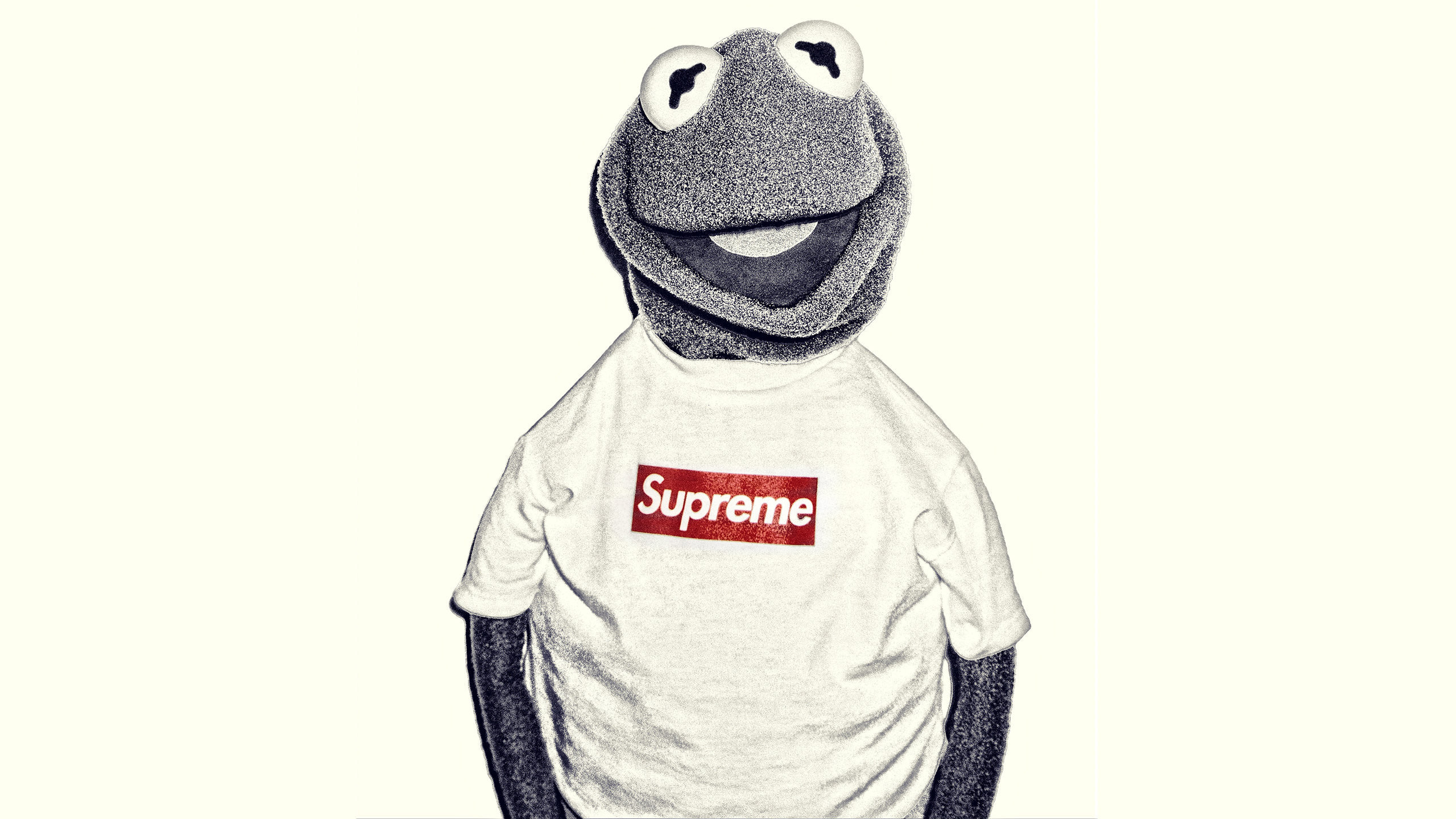 Res: 2560x1440, Download the Kermit Supreme wallpaper below for your mobile device (Android  phones, iPhone etc.)