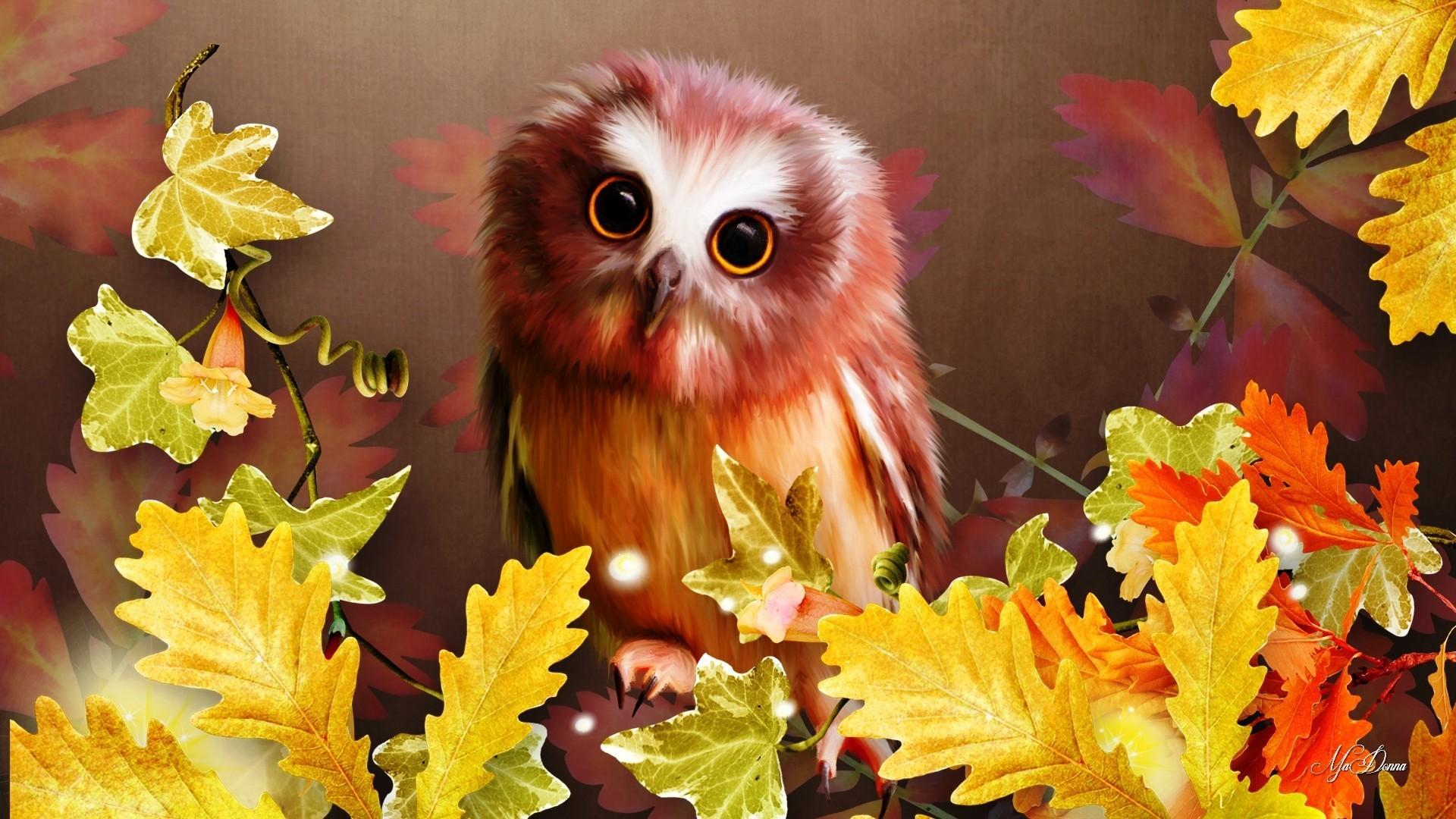 Res: 1920x1080, Autumn Leaves Quotes 2560x1600