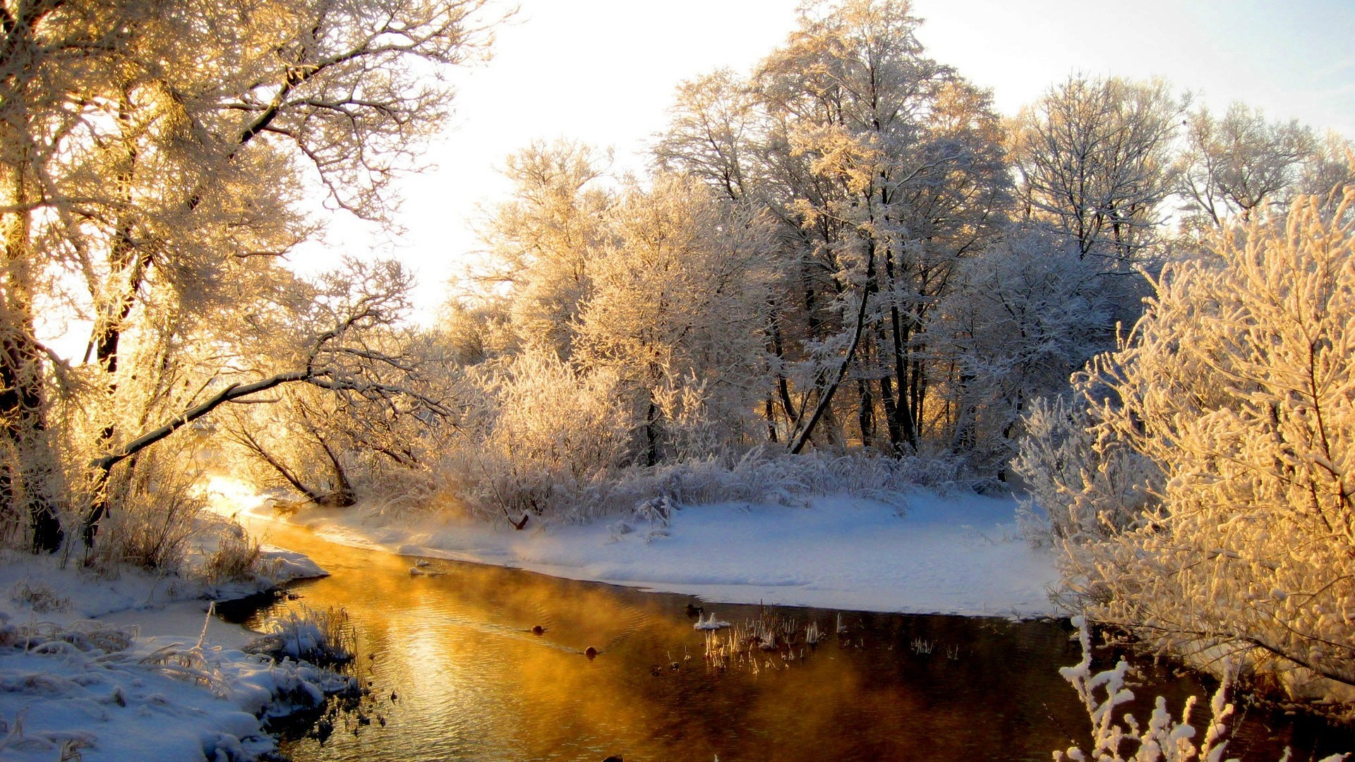 Res: 1920x1080, Winter Nature Wallpapers Photo