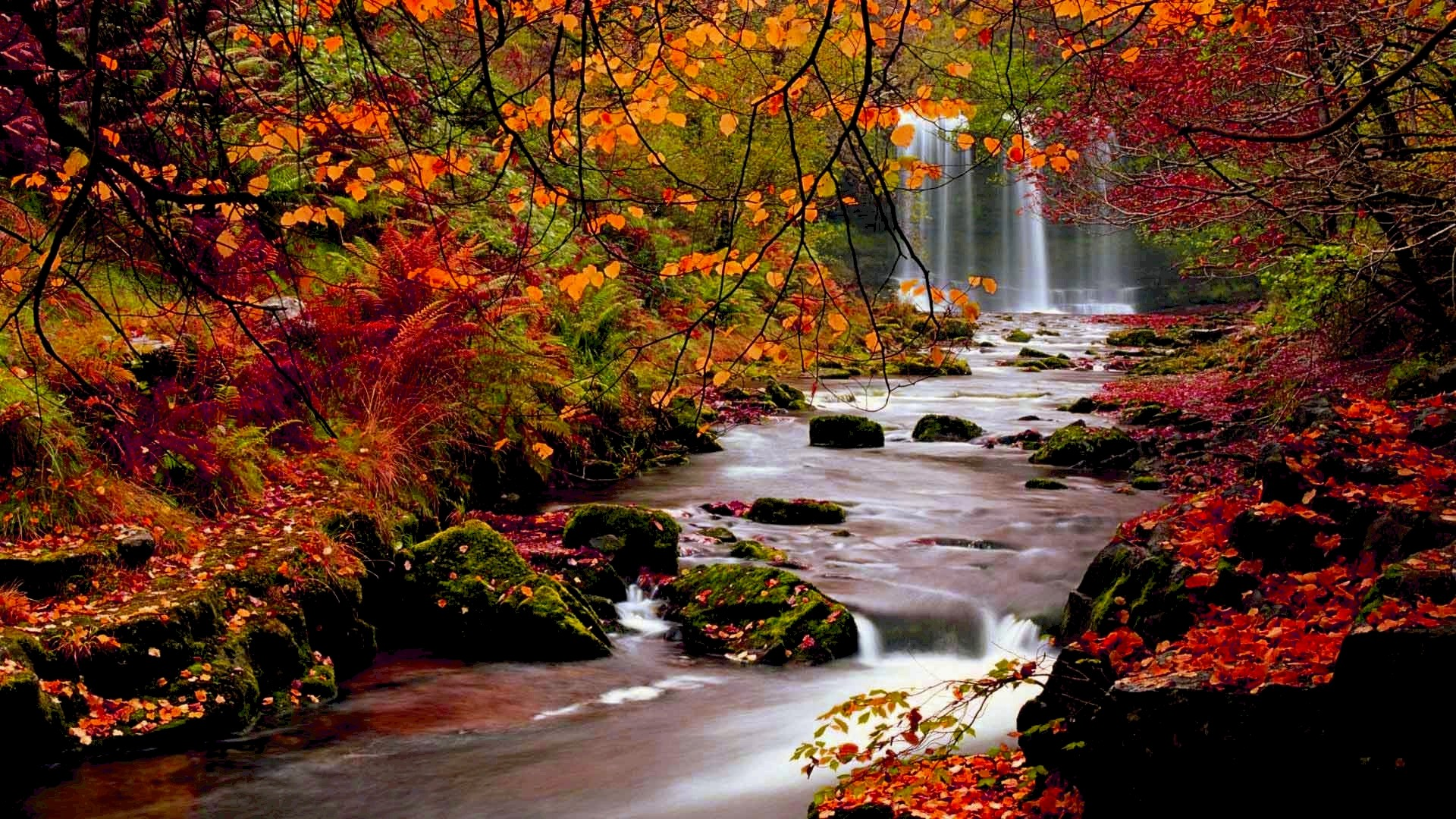 Res: 1920x1080, Hd wallpapers nature fall67.jpg