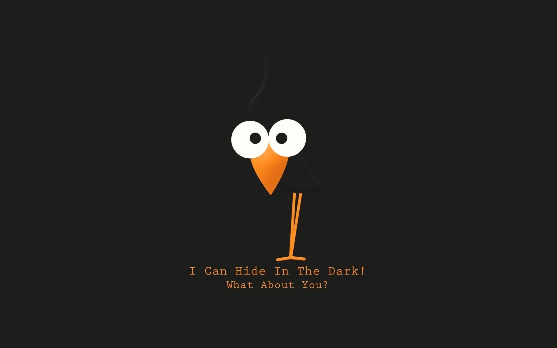 Res: 1920x1200, Bird Text Funny
