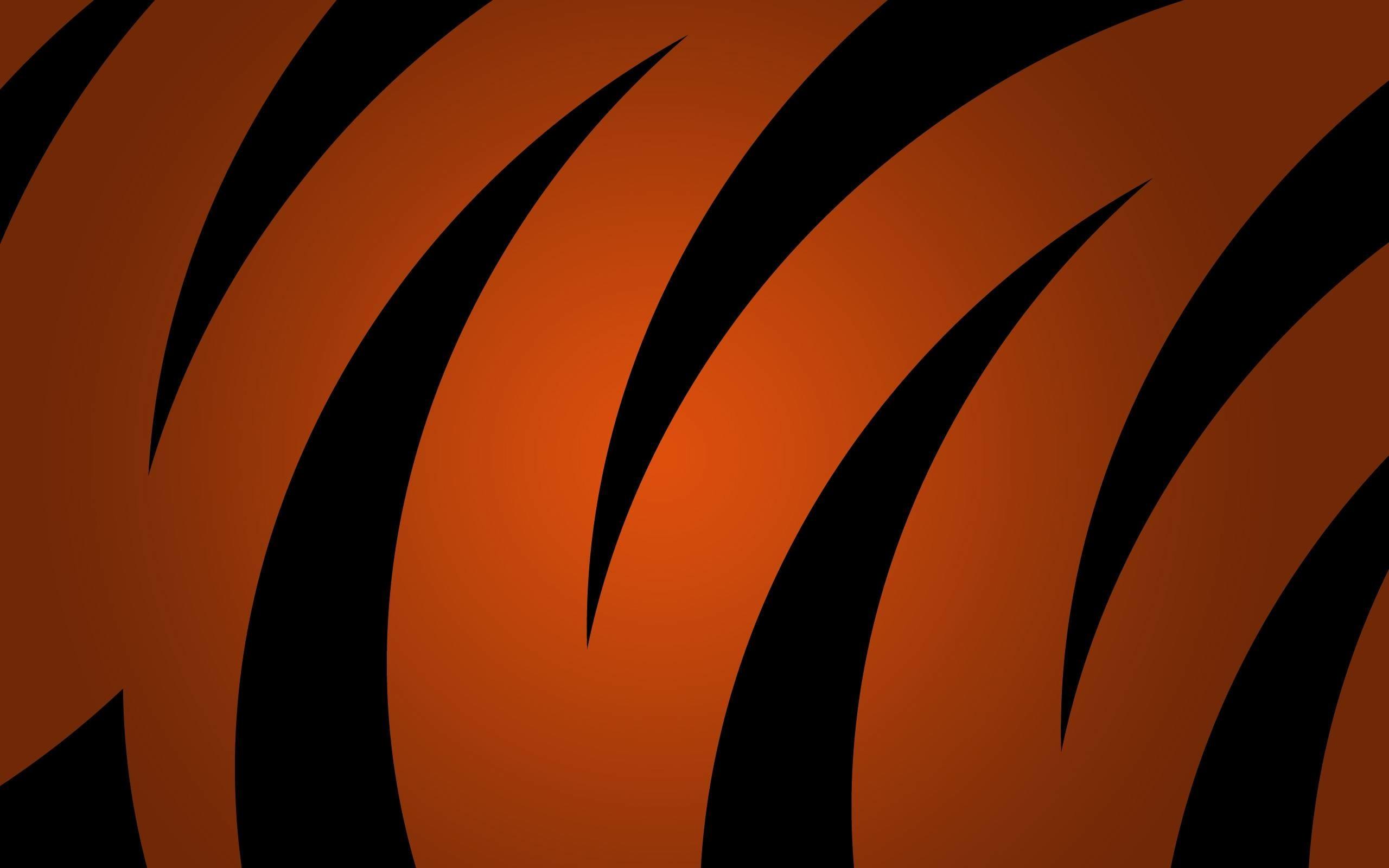 Res: 2560x1600, Tiger Stripe Wallpaper