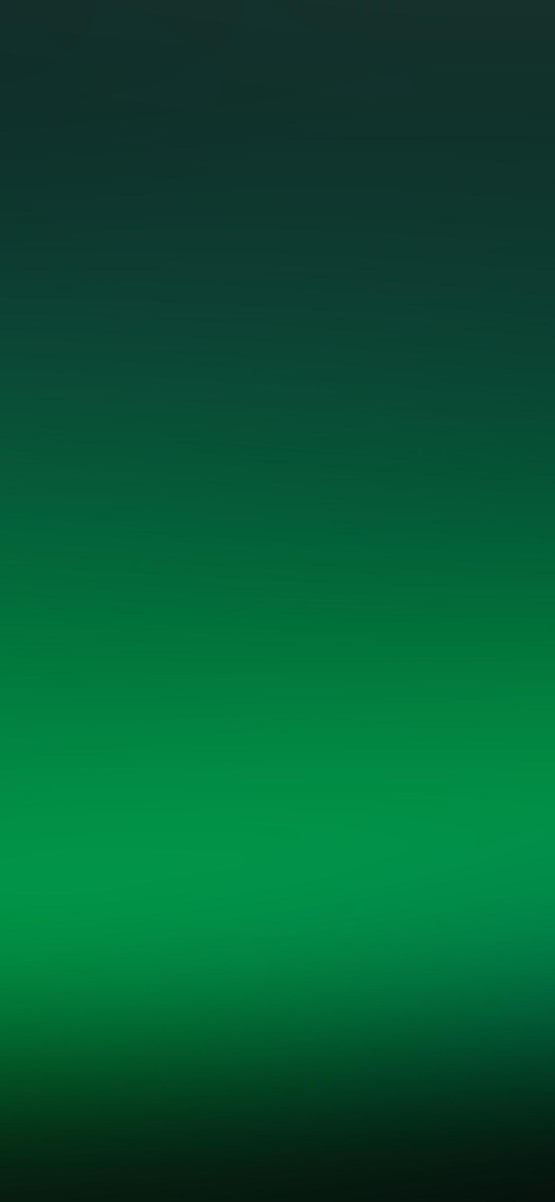 Res: 1125x2436, Iphonexpapers Com Iphone X Wallpaper Sj22 Clear Green Soft