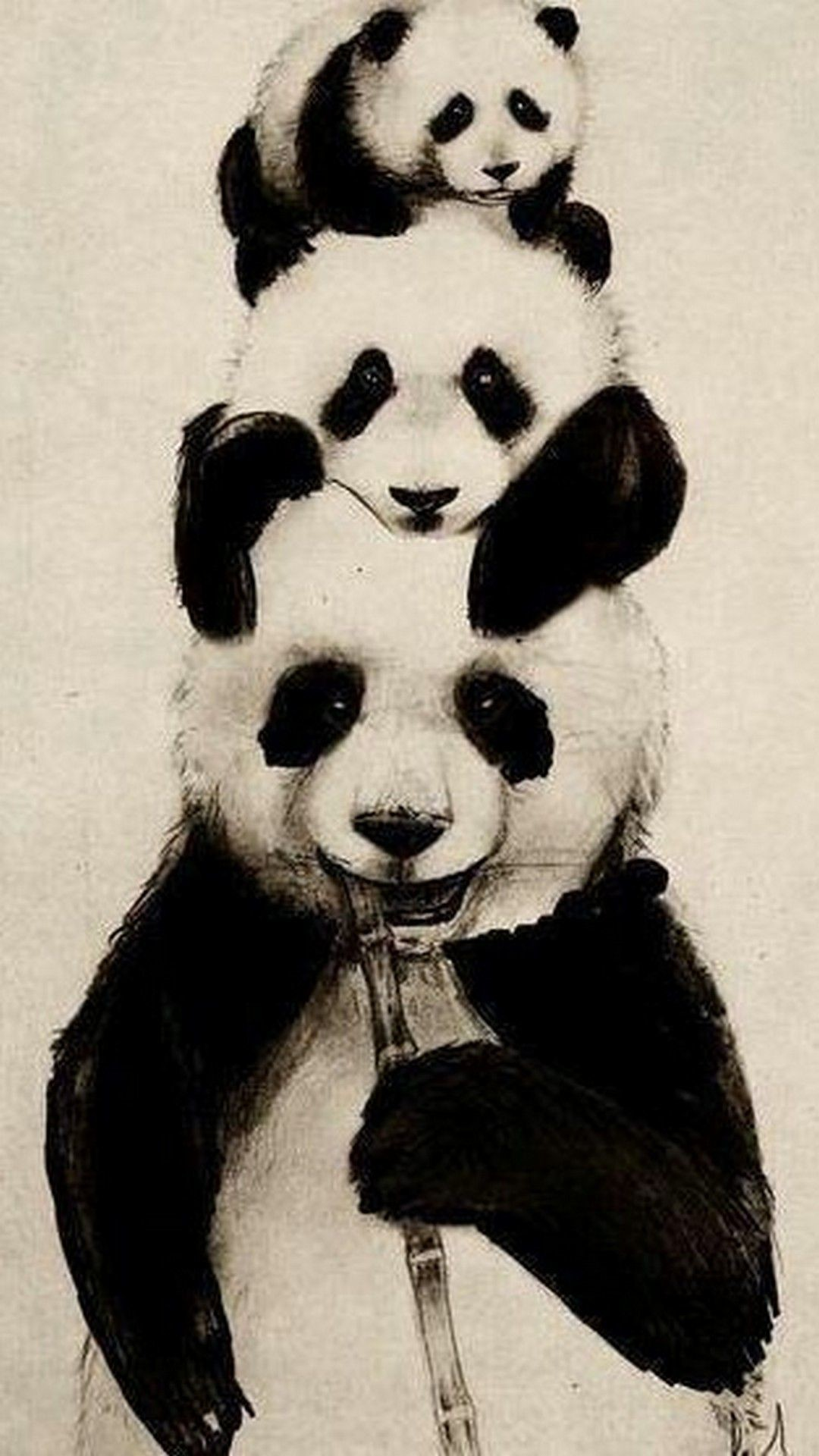 Res: 1080x1920, Cute Panda Wallpaper Android   Best HD Wallpapers