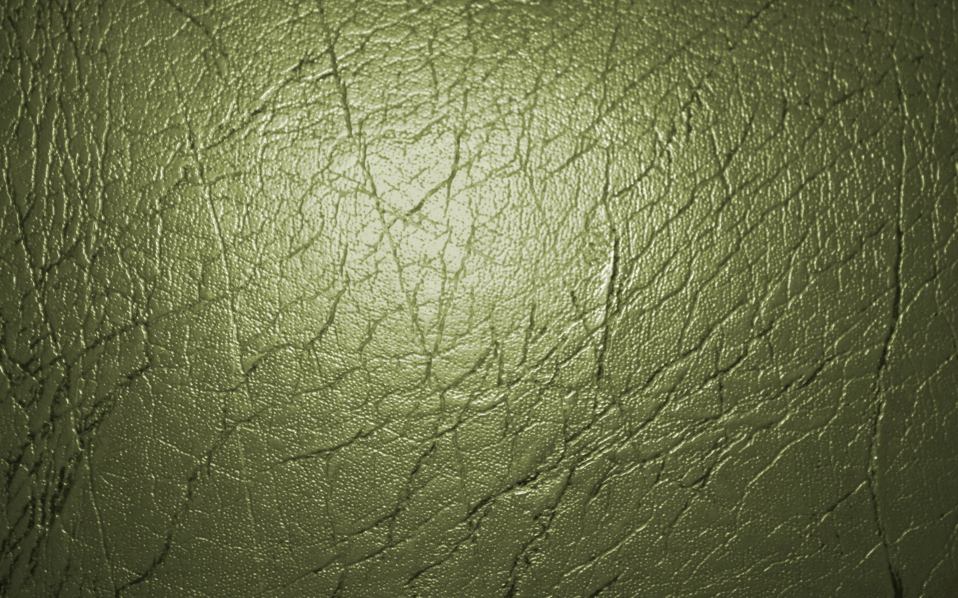 Res: 1920x1200, Style Trend: Olive Green ...