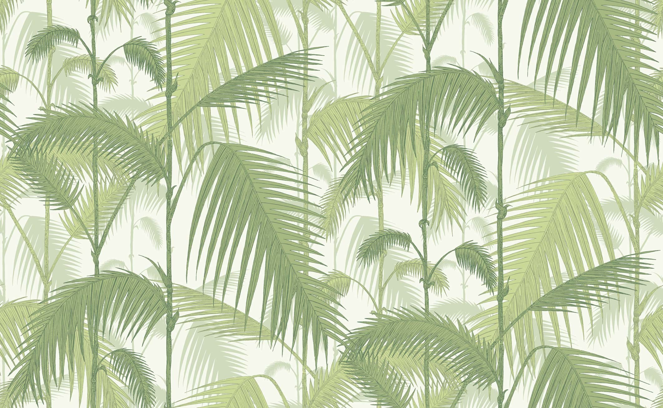 Res: 2124x1307, ... Palm Jungle wallpaper - Olive Green on White ...