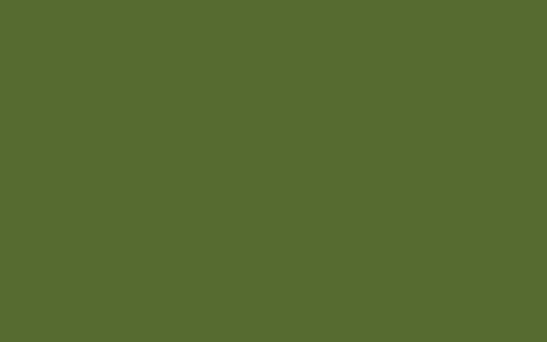Res: 2880x1800, Olive Green Wallpaper - WallpaperSafari
