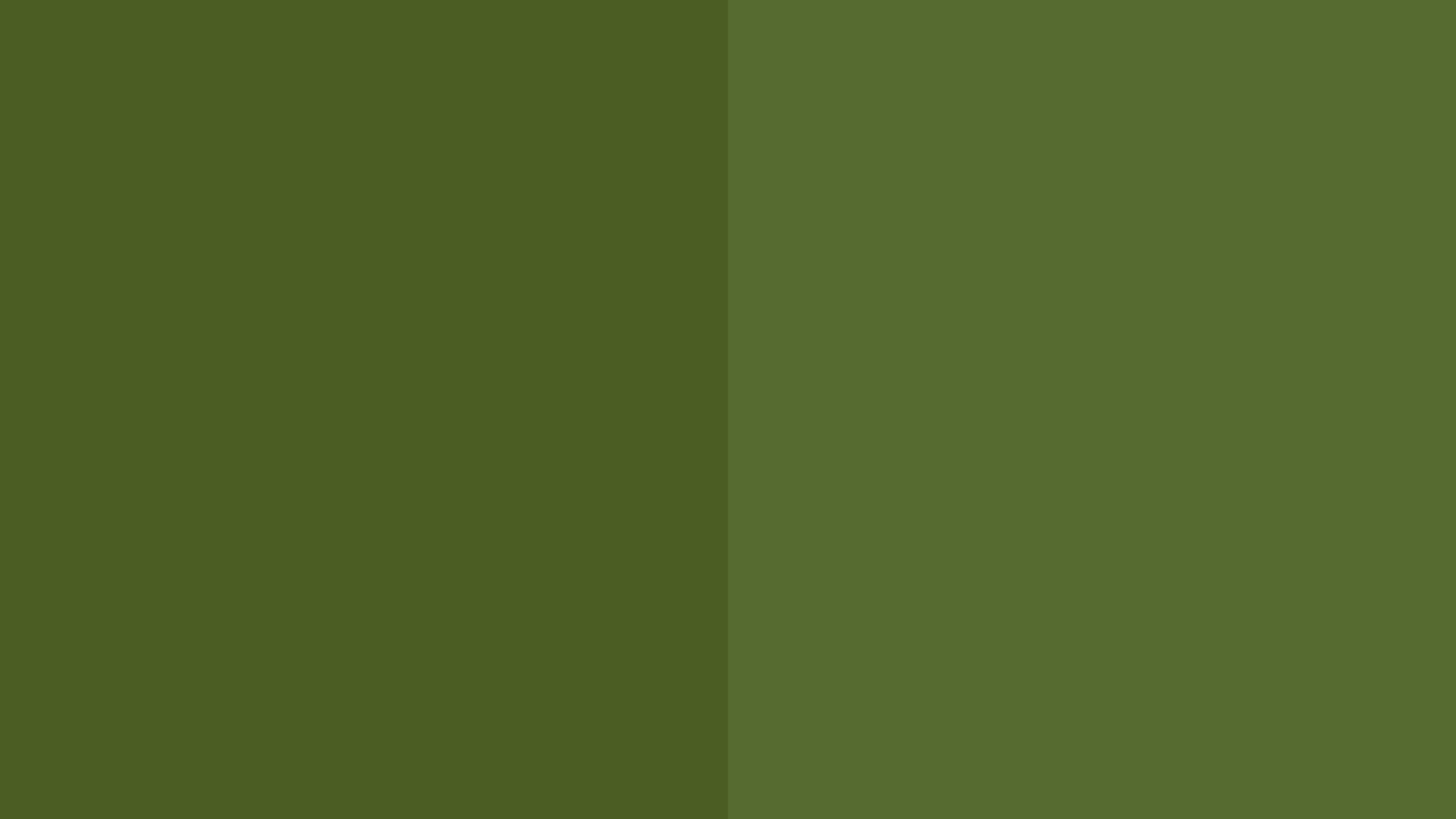 Res: 2560x1440, Olive Green Wallpaper - WallpaperSafari