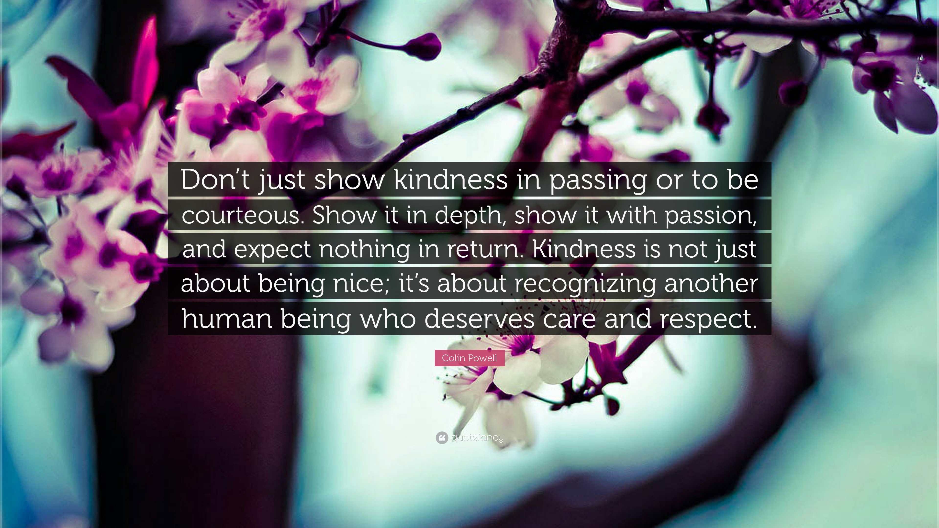 "Res: 3840x2160, Kindness Quotes: ""Don't just show kindness in passing or to be courteous"