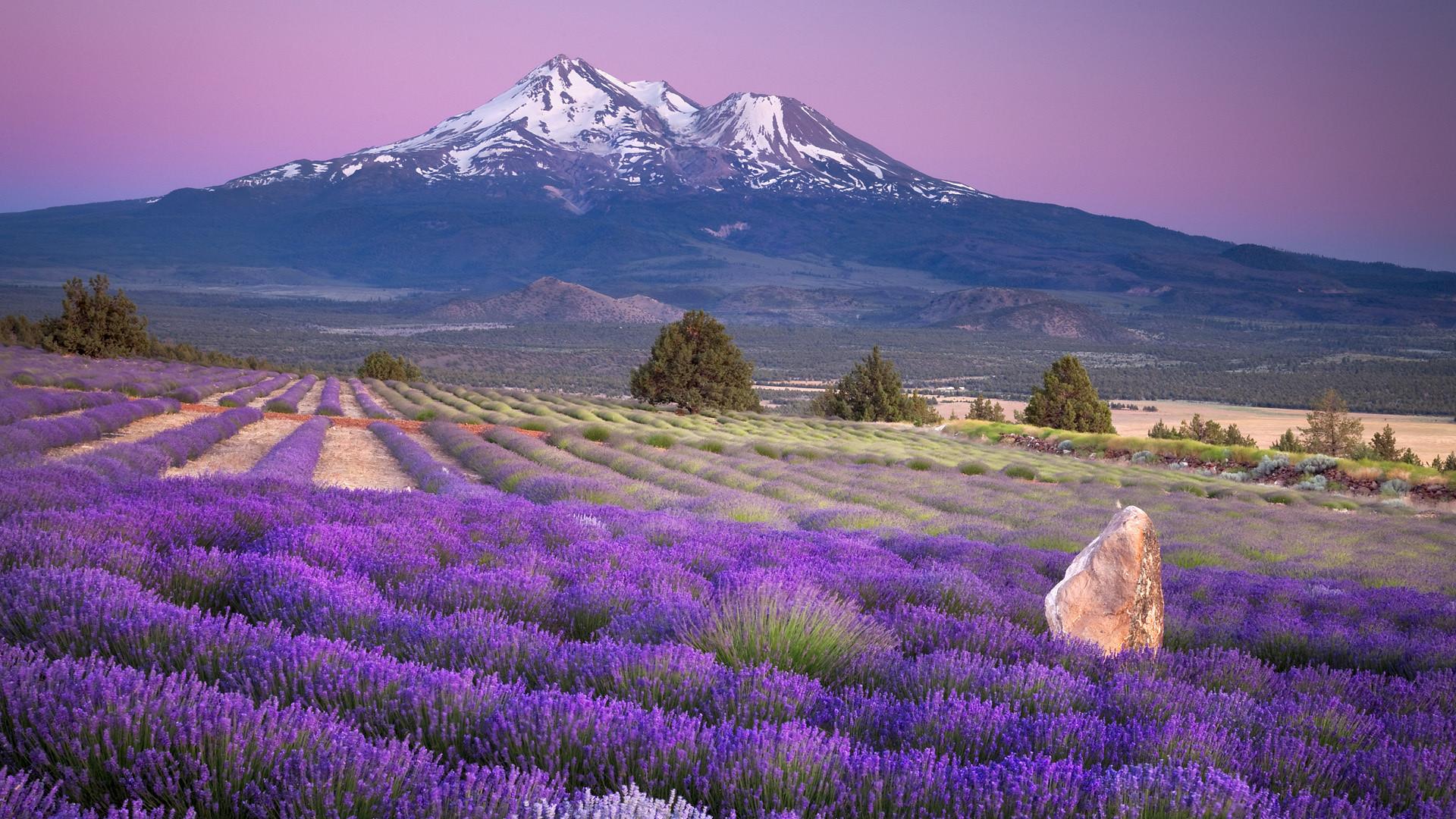 Res: 1920x1080, Mt Fuji Wallpaper 34456