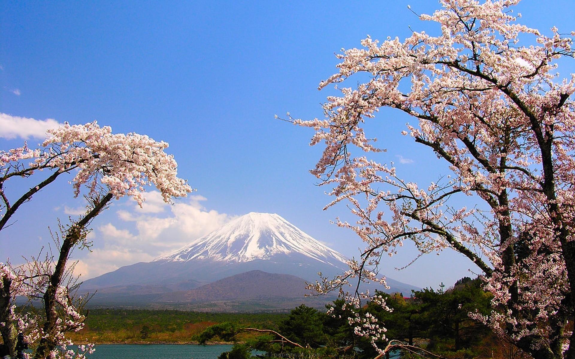 Res: 1920x1200, Mount Fuji High Definition Wallpaper