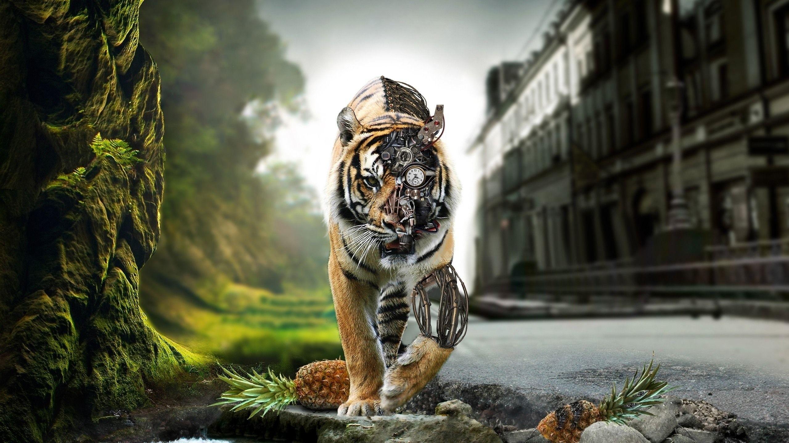 Res: 2560x1440, animals tigers  wallpaper Art HD Wallpaper