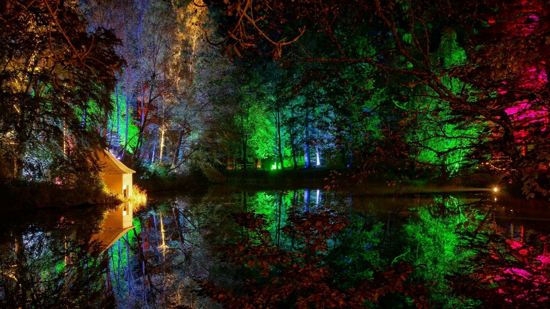 Res: 1920x1080, Colorful lights in the forest wallpaper