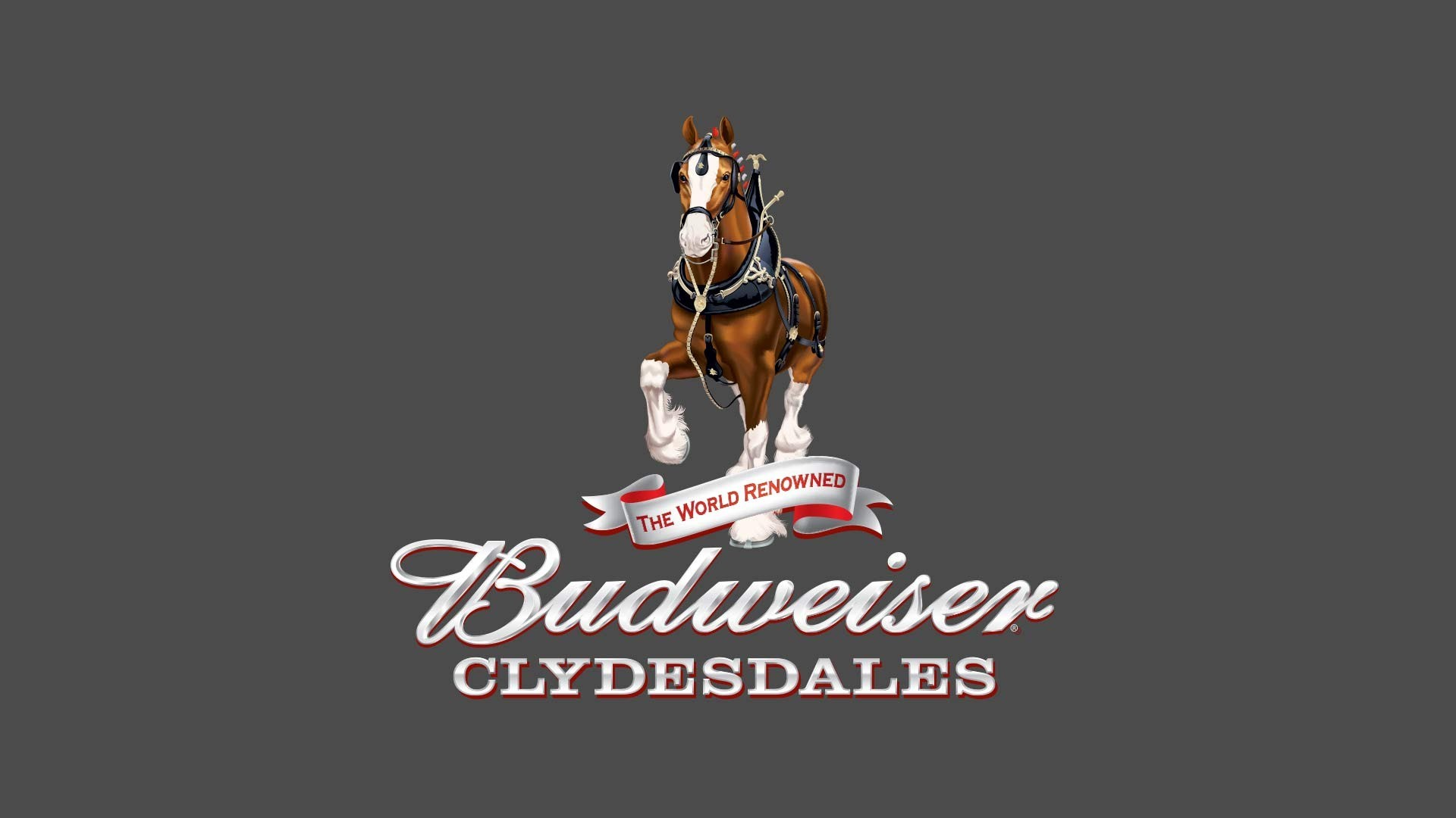 Res: 1920x1080, Budweiser Clydesdales in the Cincinnati Reds Opening Day parade