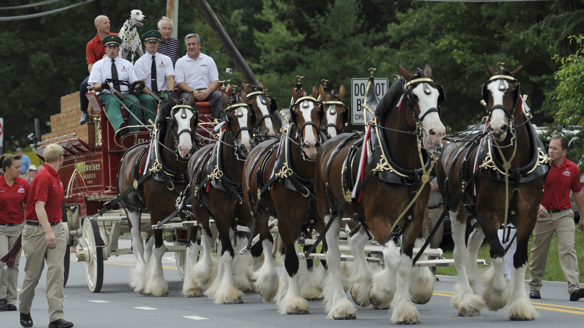 Res: 1920x1080, Crisis averted: Budweiser Clydesdales will appear in Super Bowl commercial  | NFL | Sporting News