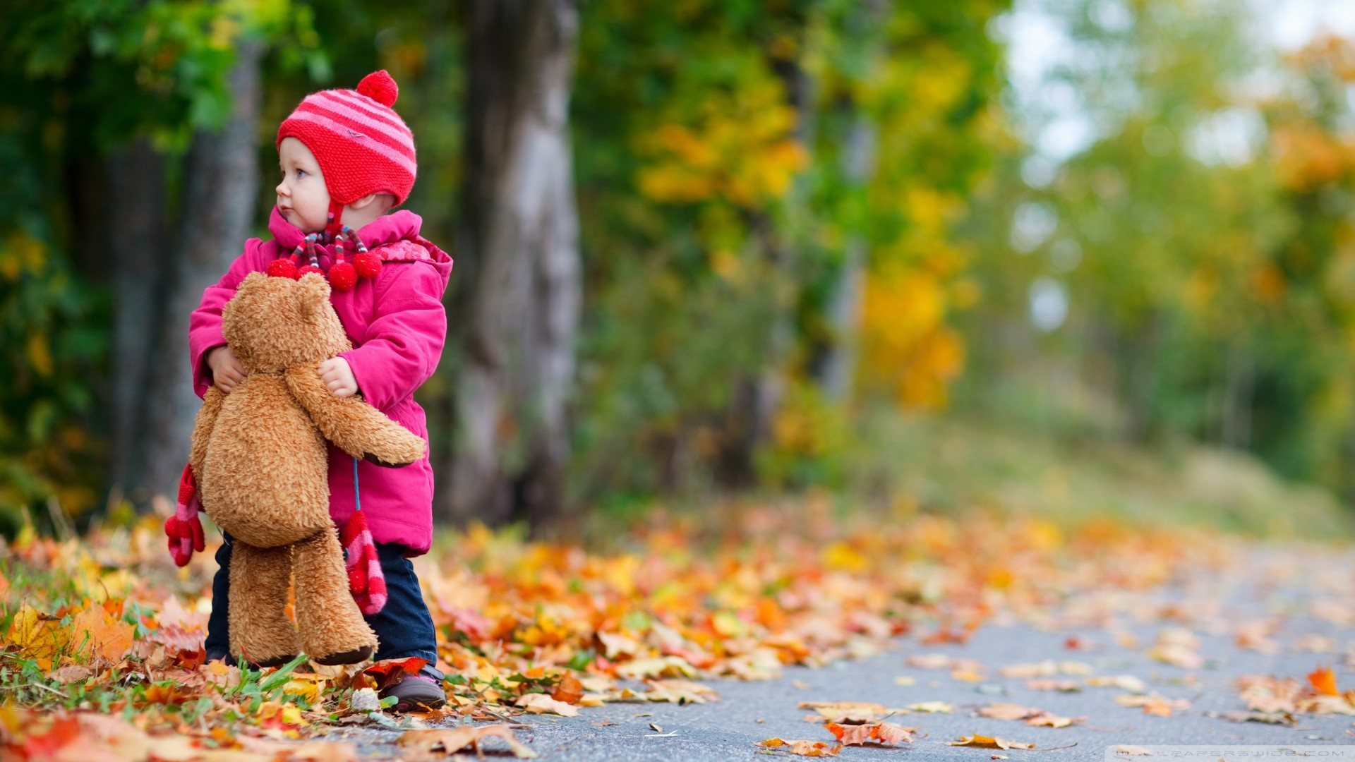 Res: 1920x1080, Baby Kid With Teddy Bear in Autumn Season Wallpaper 5656 #783