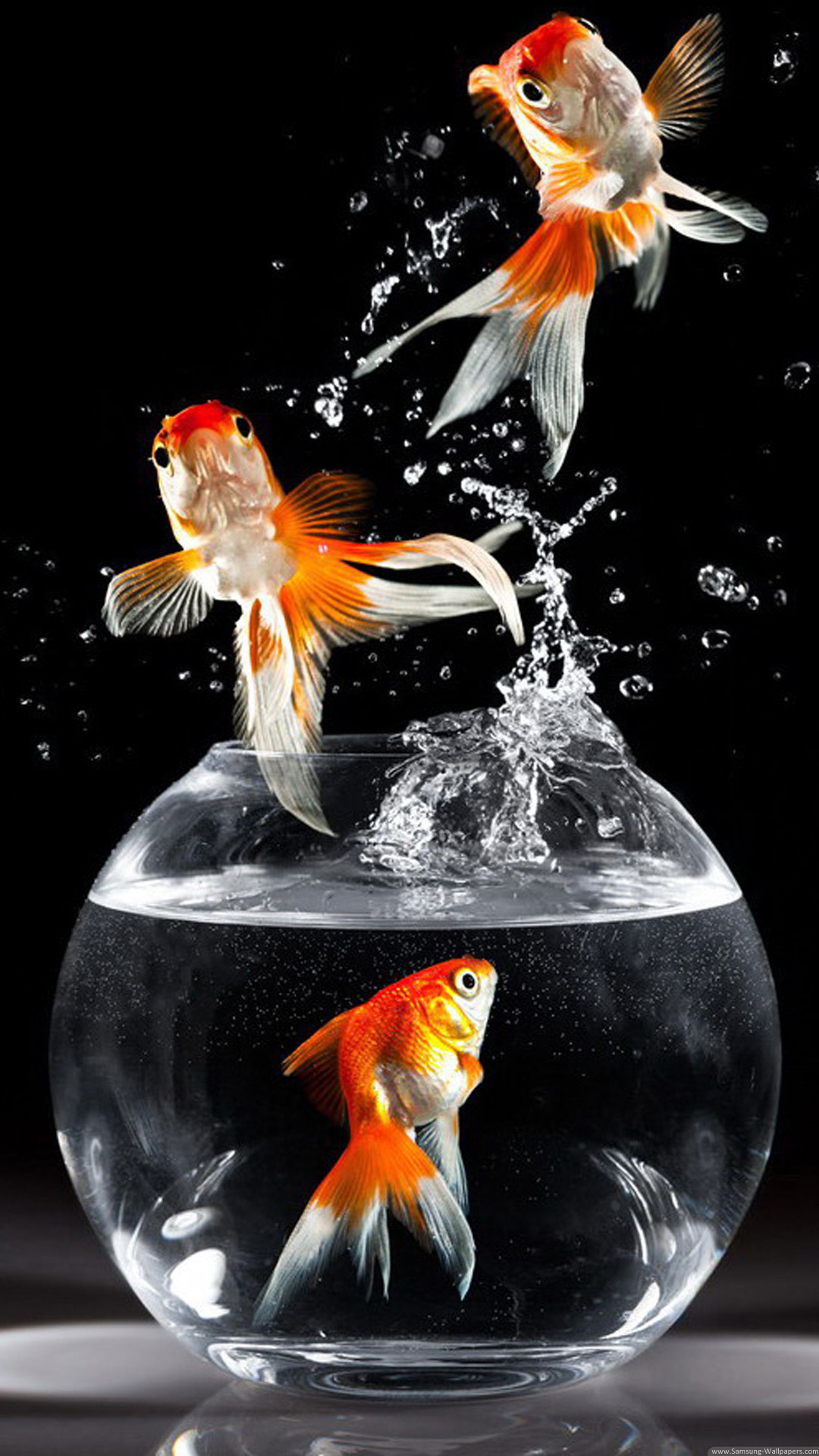 Res: 1080x1920, Goldfish Desktop Lock Screen  Samsung Galaxy Note 3 Wallpaper HD