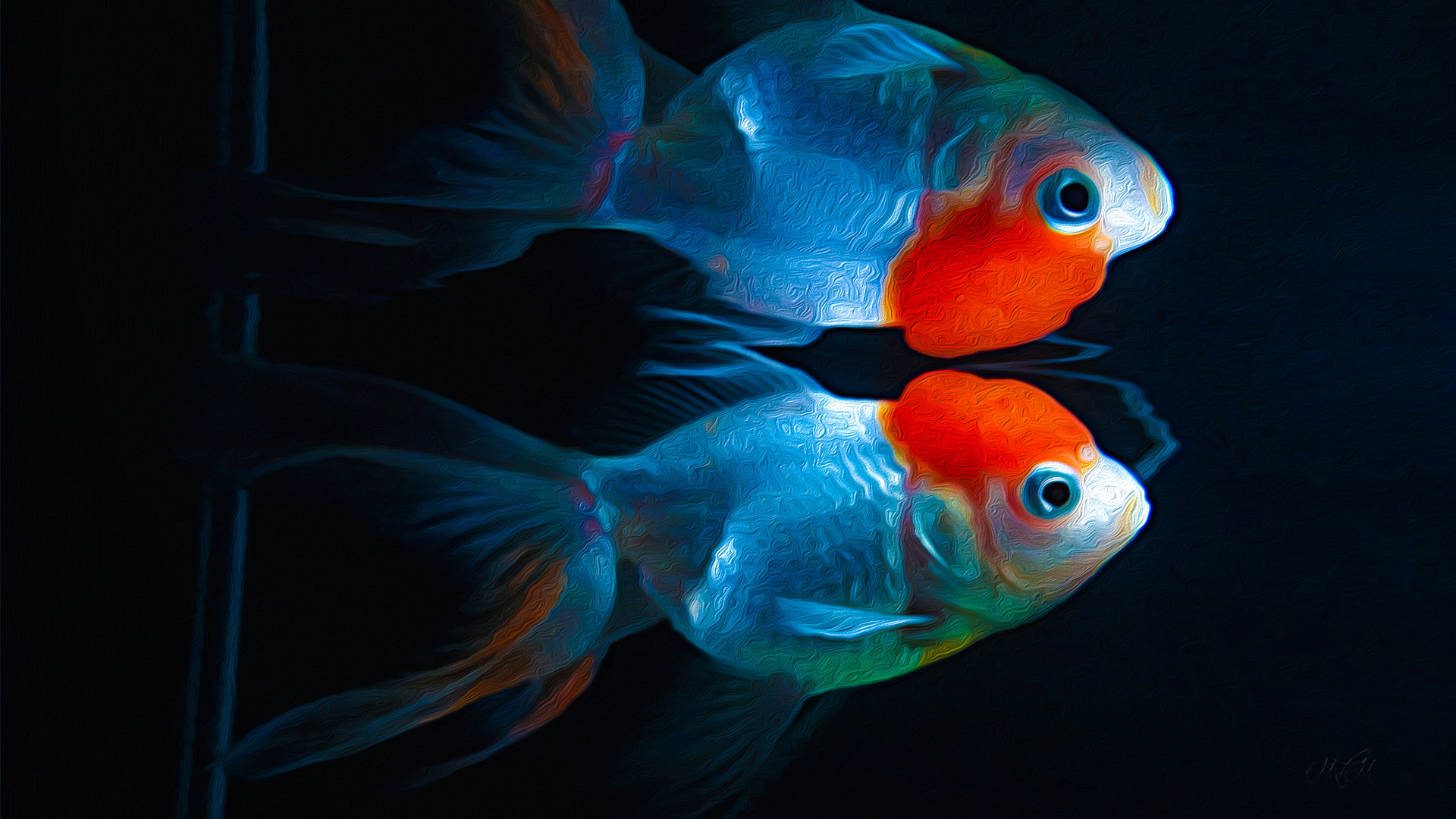 Res: 1920x1080, Animal - Goldfish Kinguio Artwork Fish Animal Wallpaper