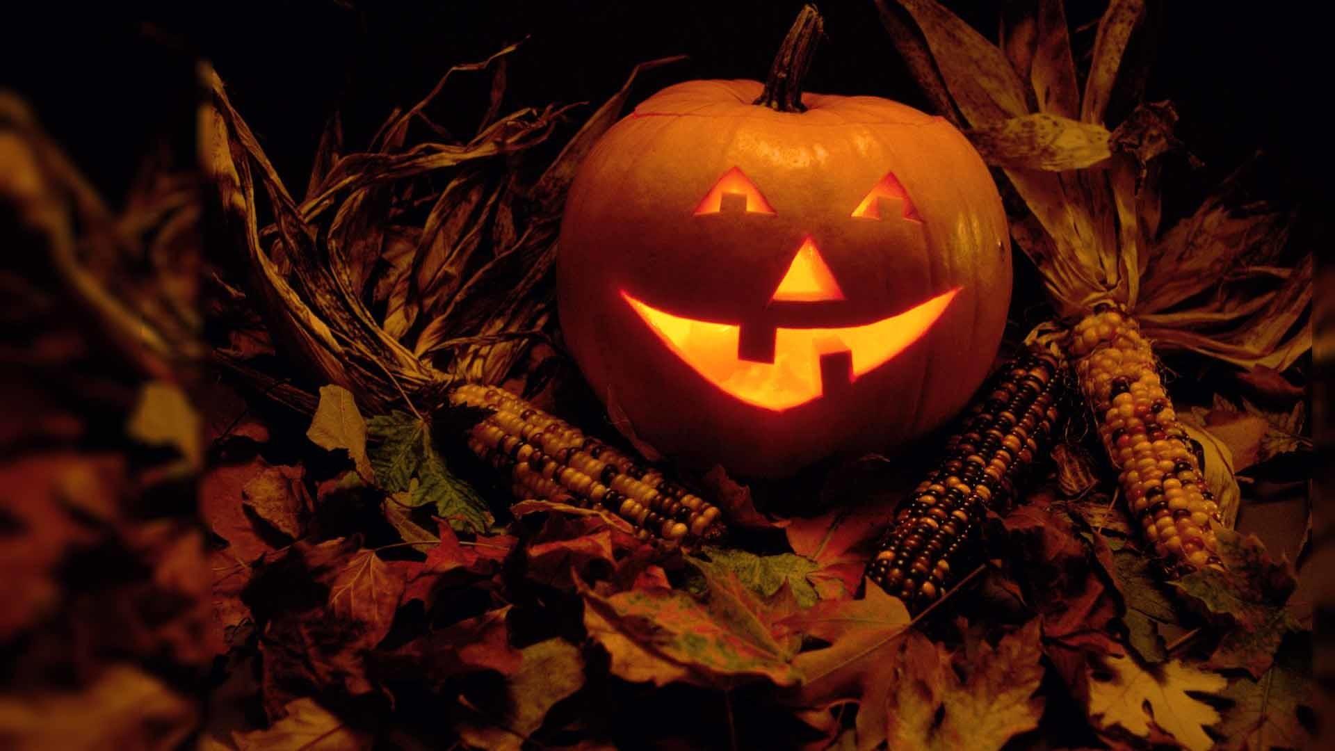Res: 1920x1080, Laughing Pumpkin On Halloween Wallpaper