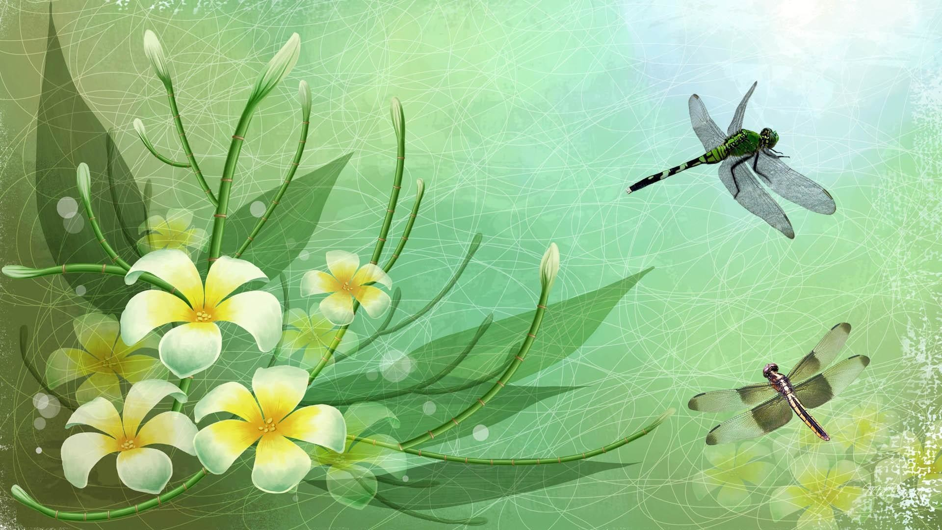 Res: 1920x1080, Dragonflies HD Desktop Wallpapers for Widescreen, High Definition .