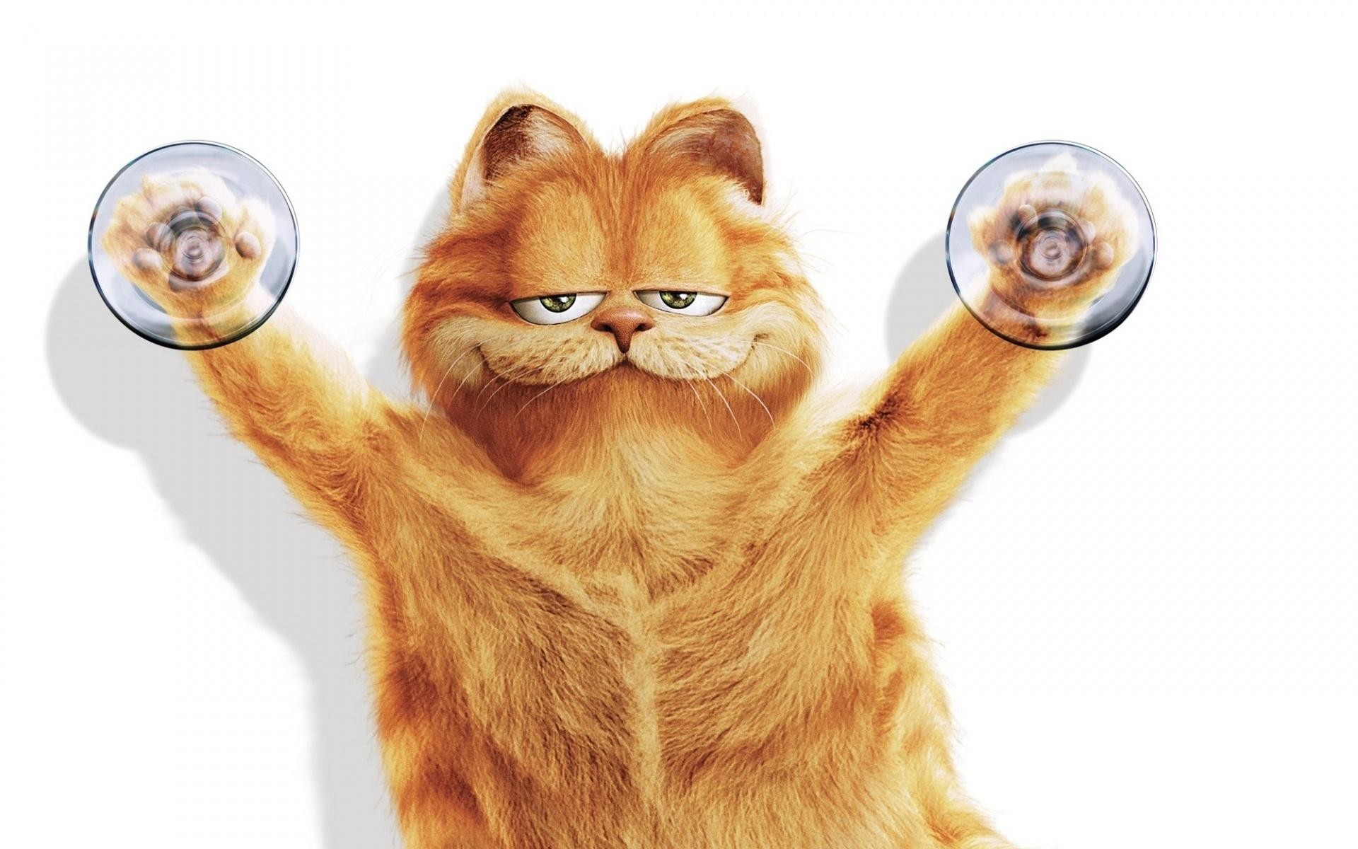 Res: 1920x1200, Garfield wallpapers HD