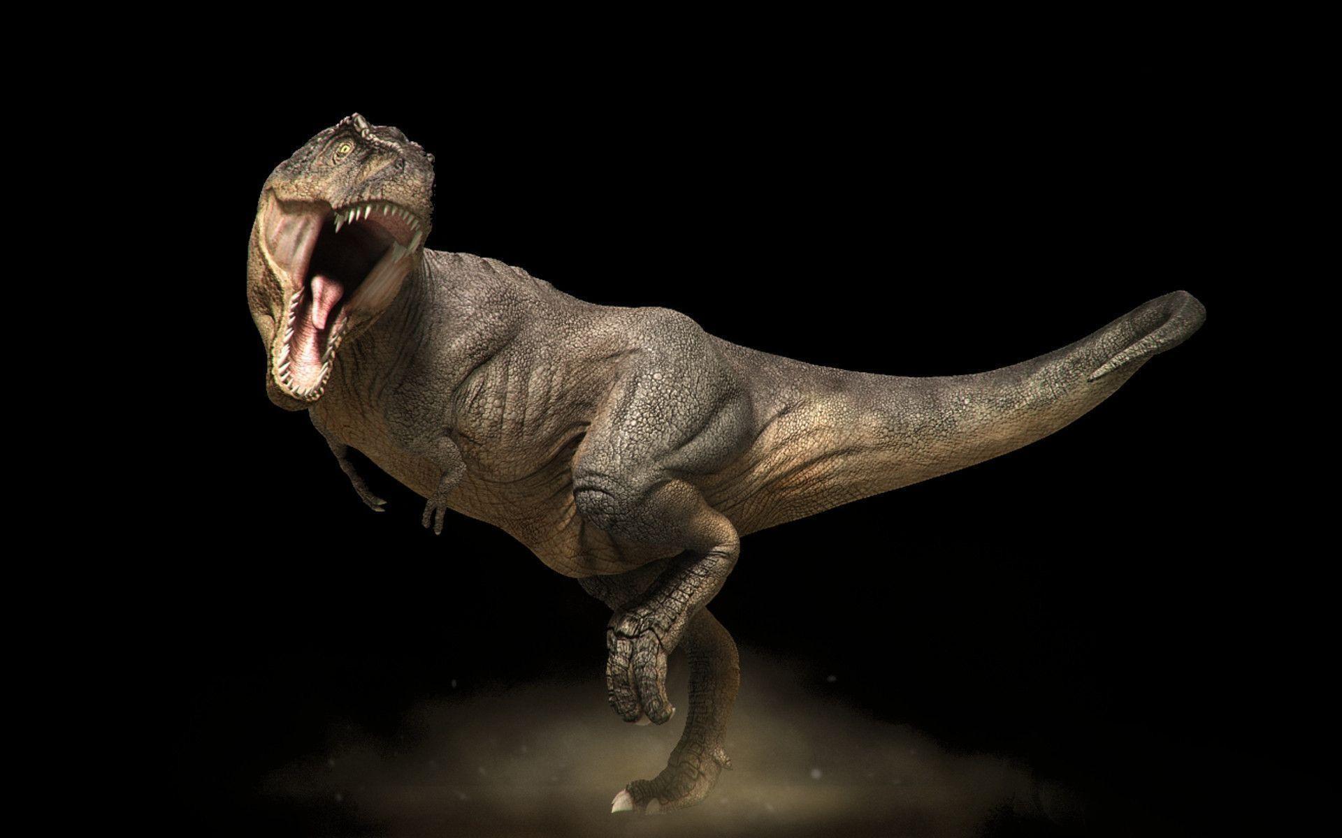 Res: 1920x1200, Fonds d'écran T Rex : tous les wallpapers T Rex
