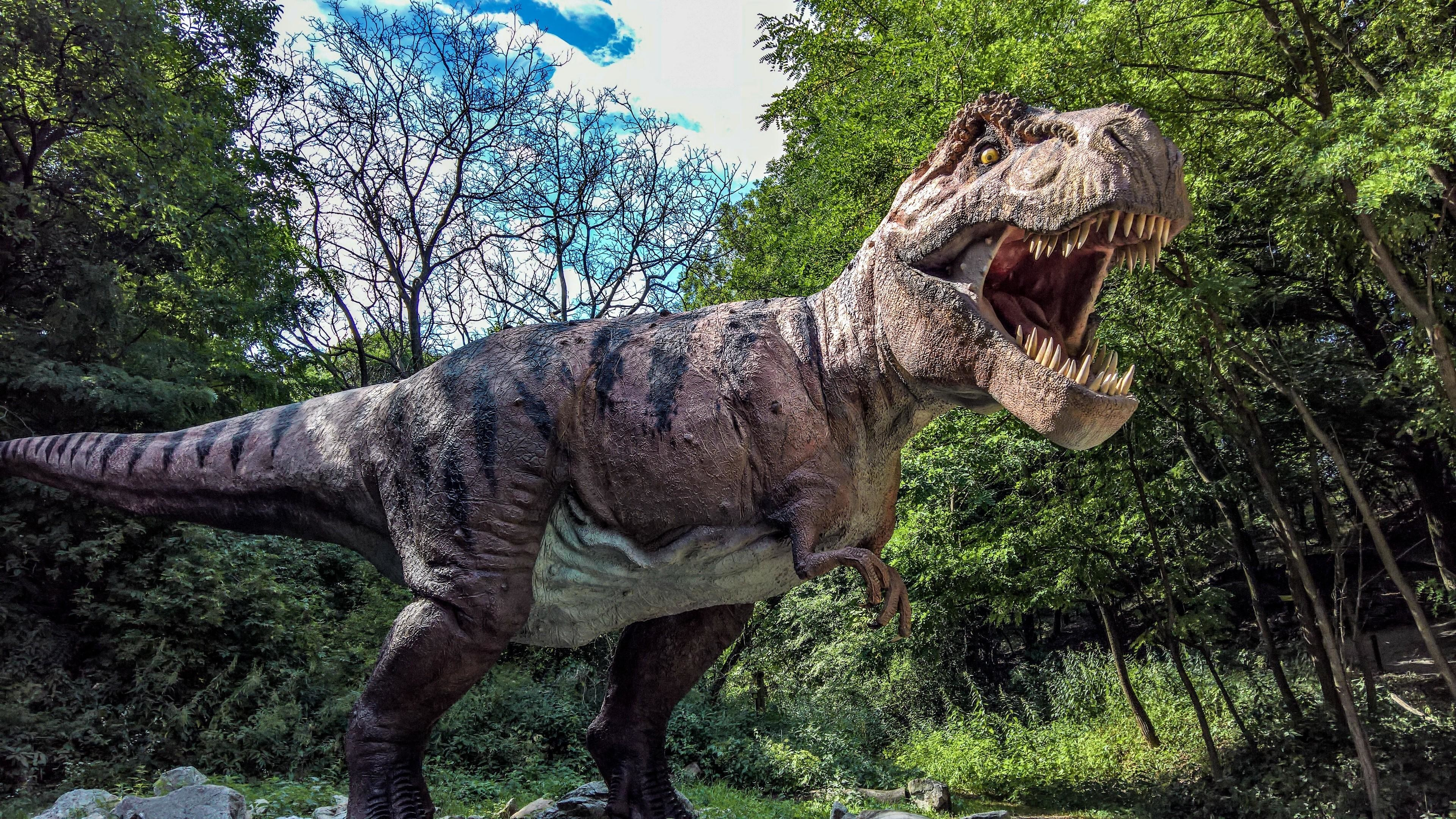 Res: 3840x2160, T-Rex Dino In The Dino Park, Bratislava, Slovakia Wallpaper | Wallpaper  Studio 10 | Tens of thousands HD and UltraHD wallpapers for Android, ...