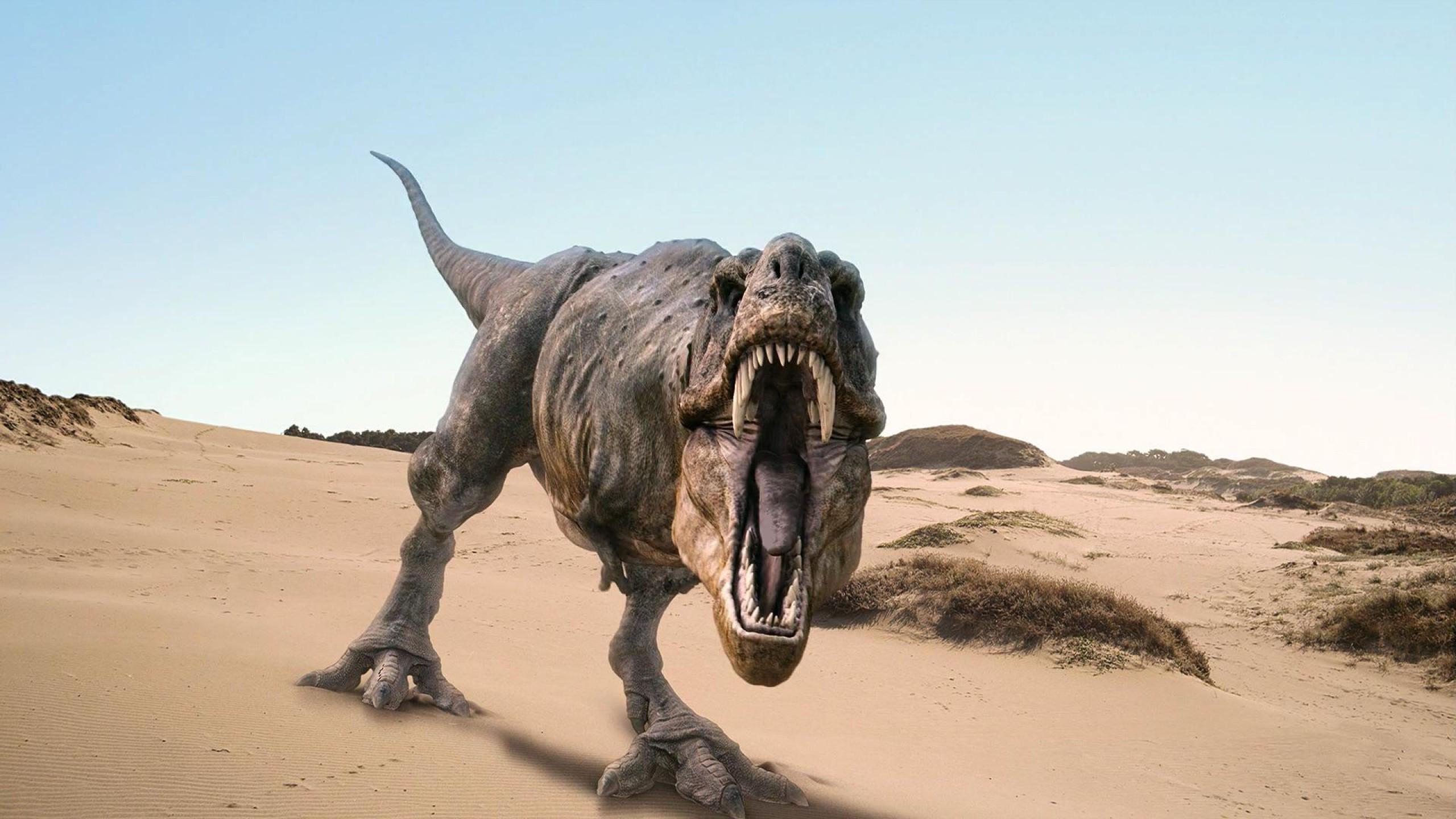 Res: 2560x1440, 3d-t-rex-wallpaper